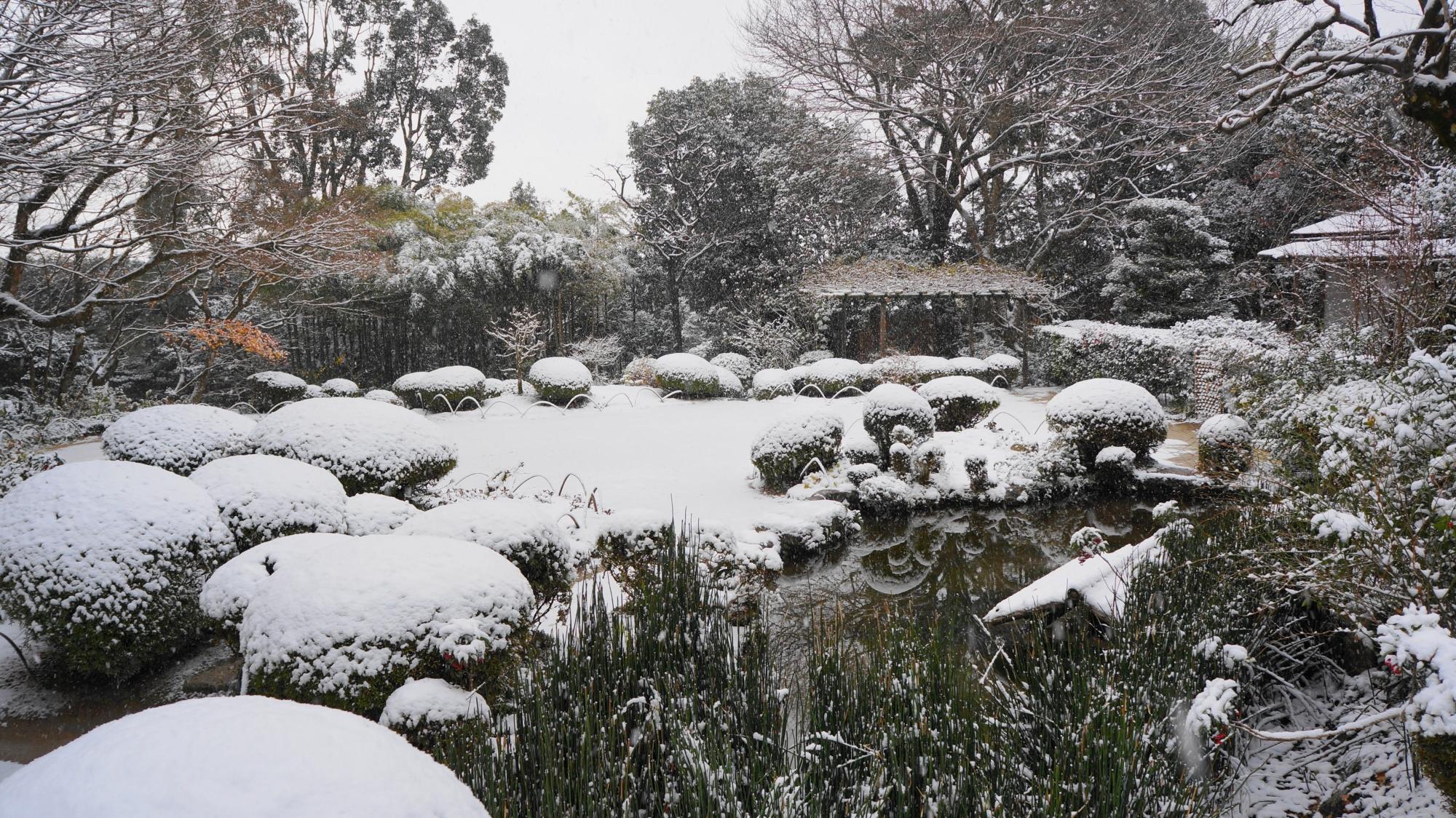 詩仙堂の白銀の庭園
