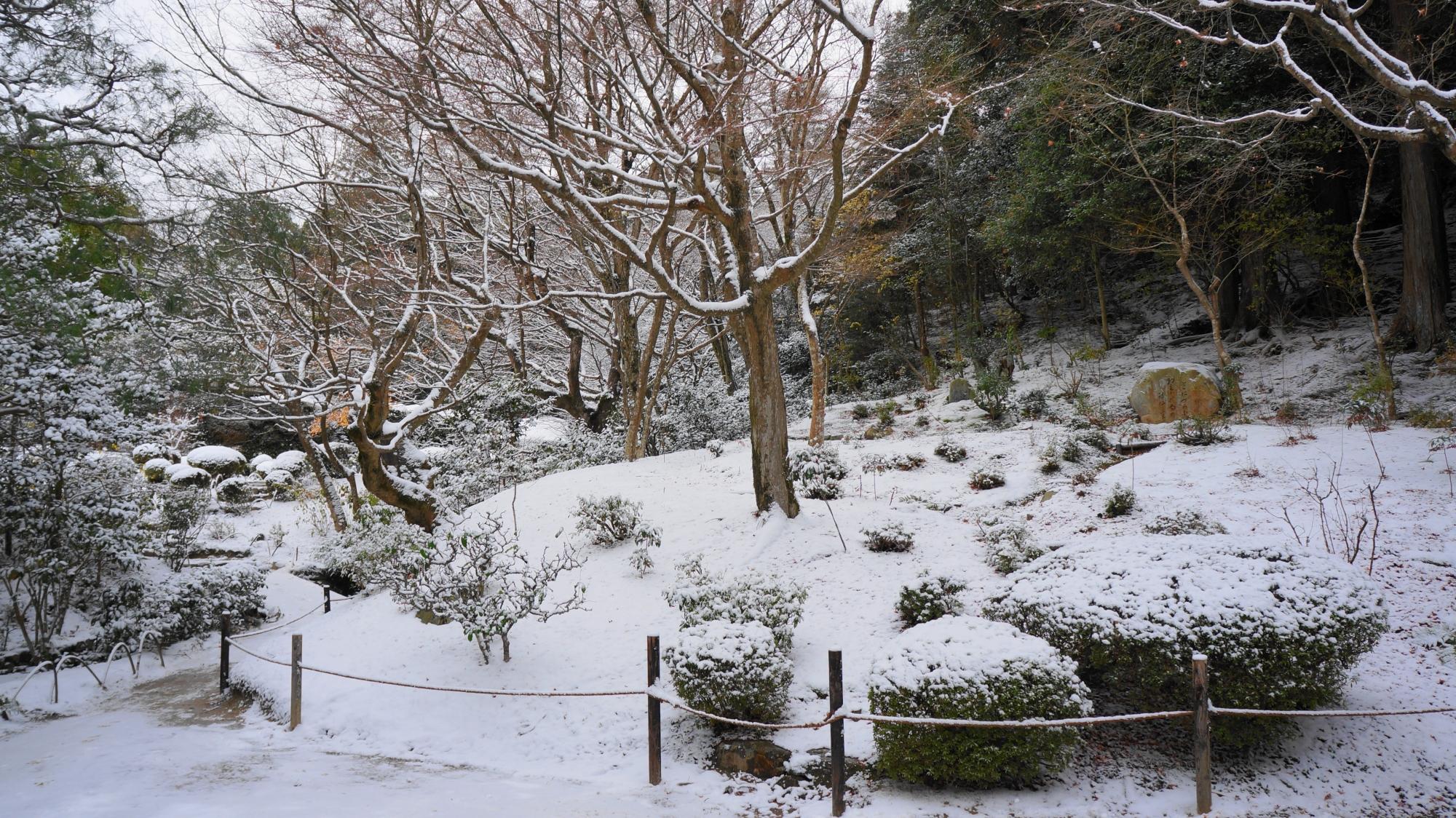 真っ白にそまった詩仙堂の庭園