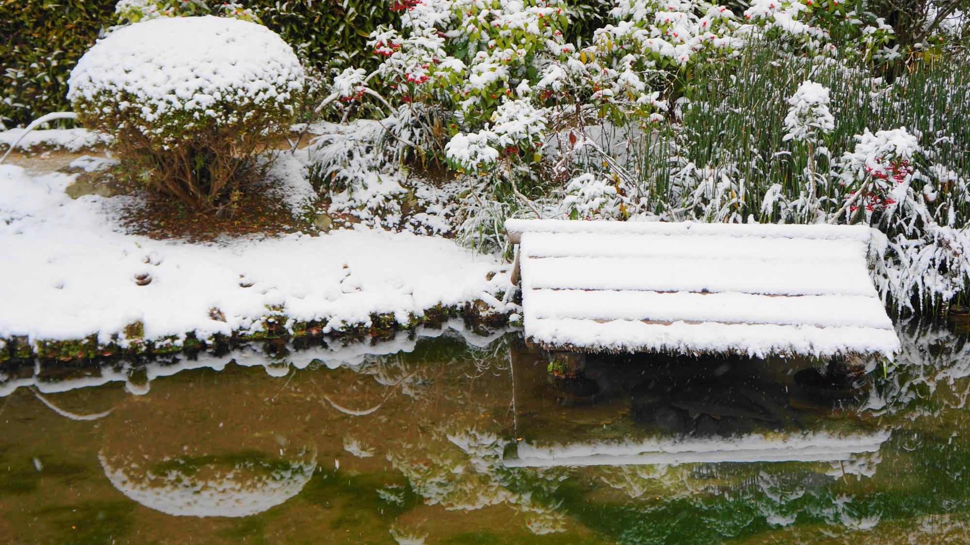 美しい雪の中の水鏡