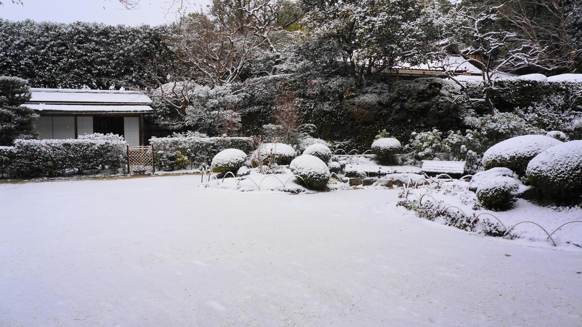 白銀に佇む雪の残月軒