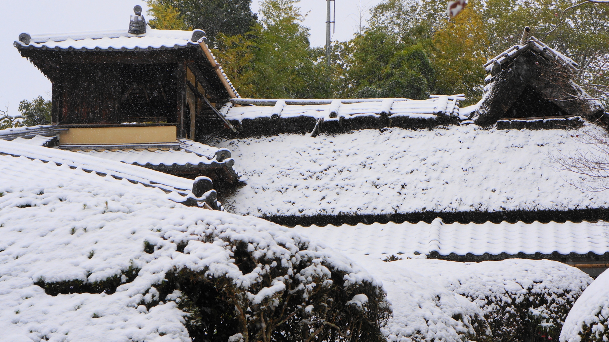 詩仙堂の見事な雪の嘯月楼