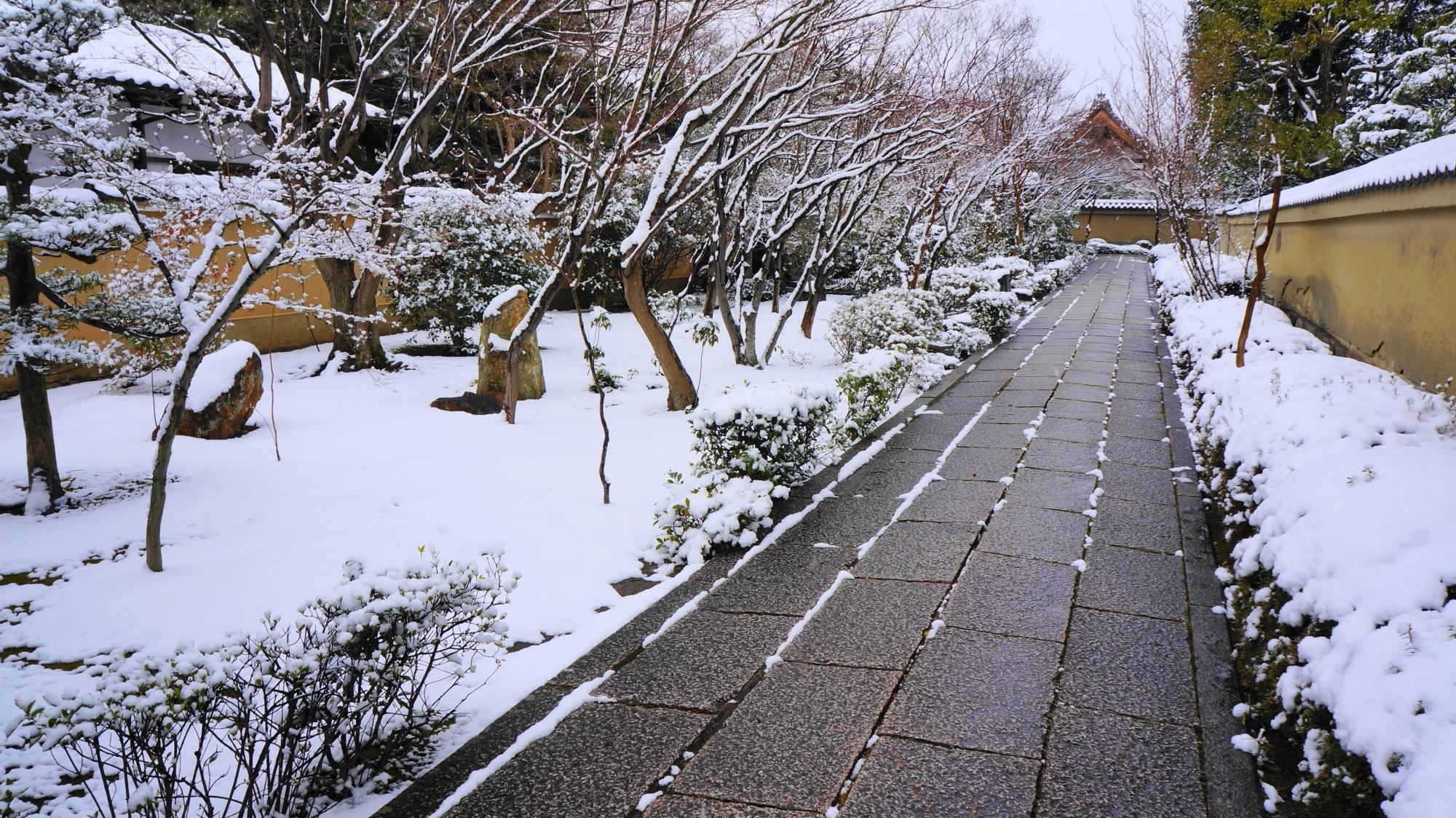 芳春院の参道の雪景色