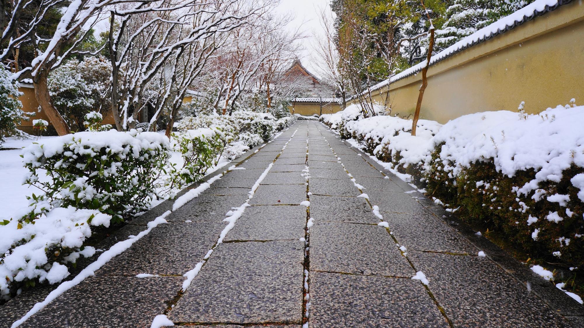 高画質 写真 芳春院 雪景色