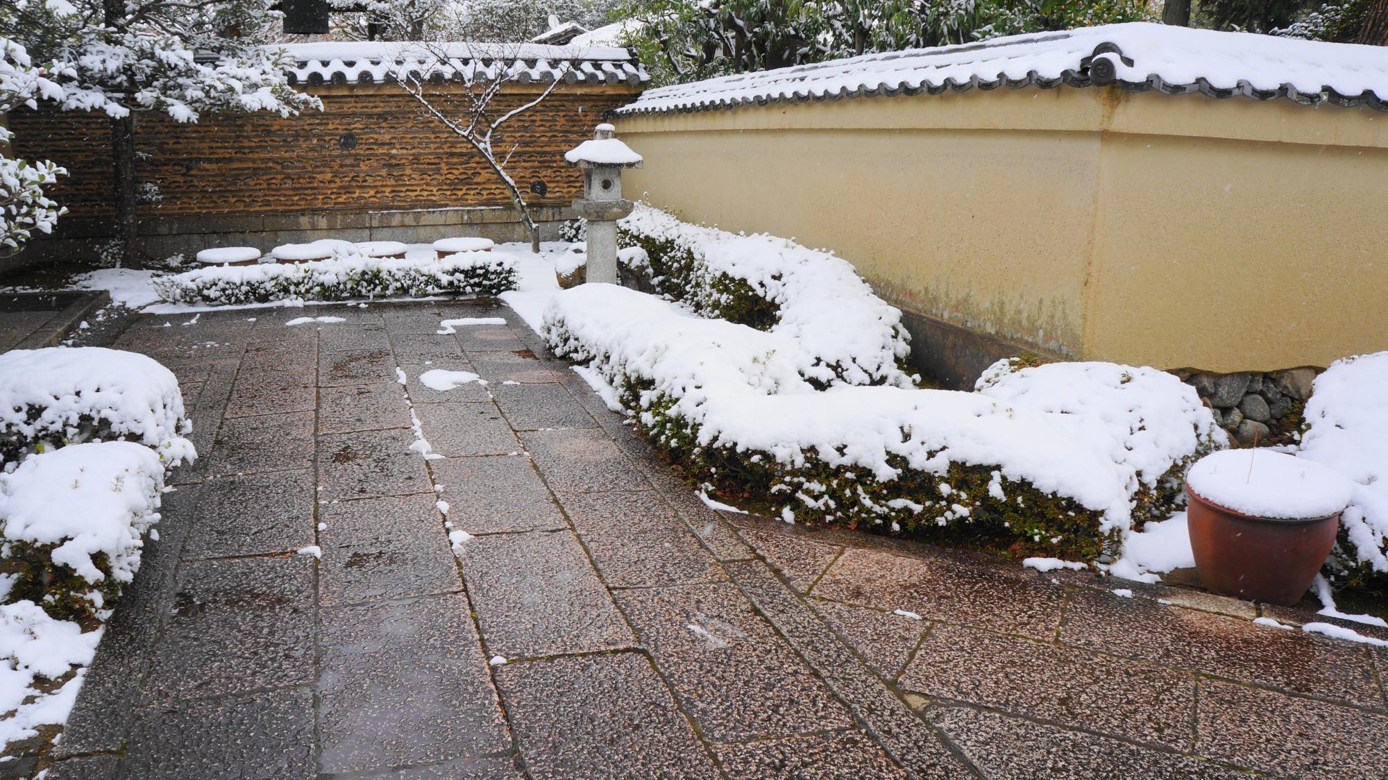 芳春院の上品で趣きある冬景色