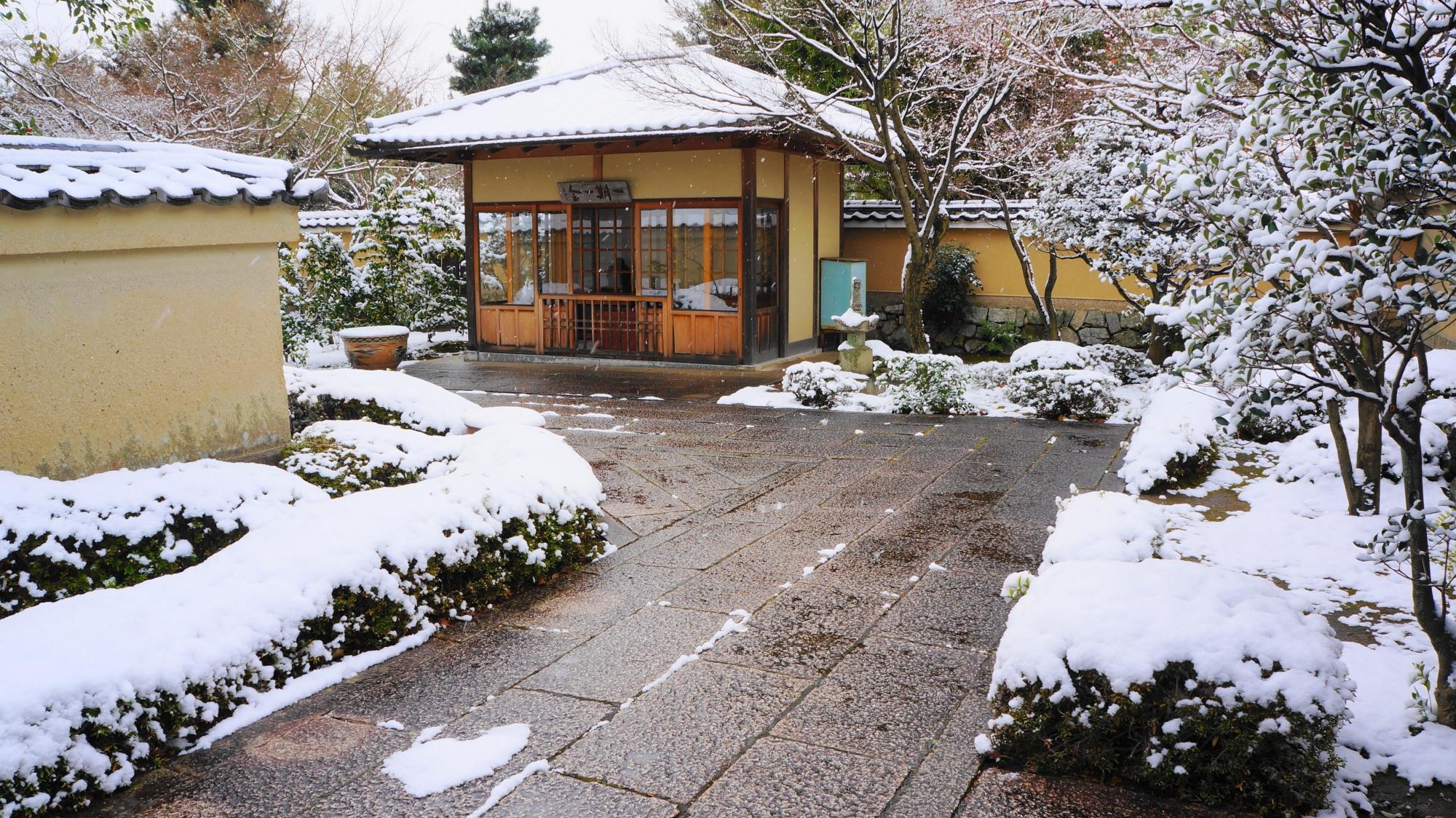 華やかな雪の花が咲く芳春院