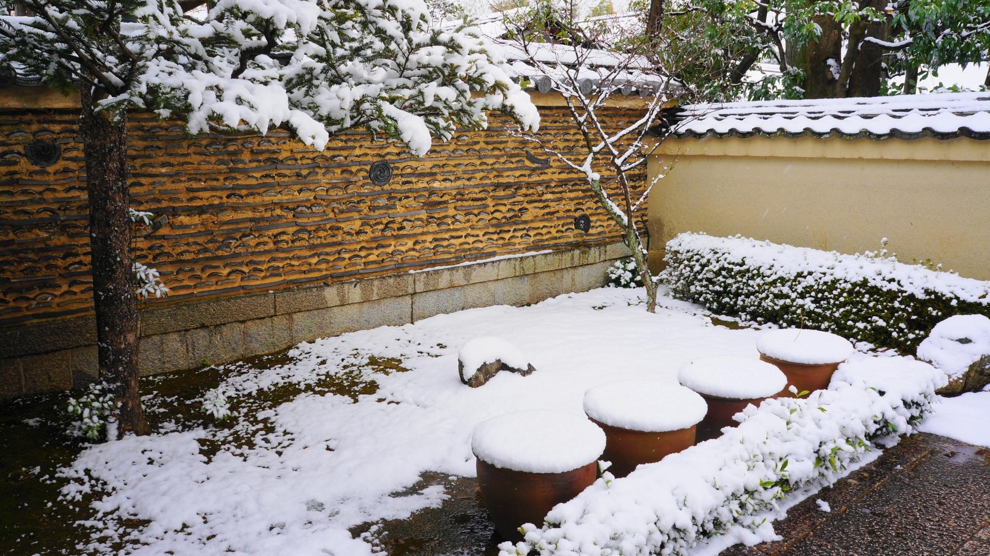 雪がてんこ盛りで真っ白になった蓮の鉢