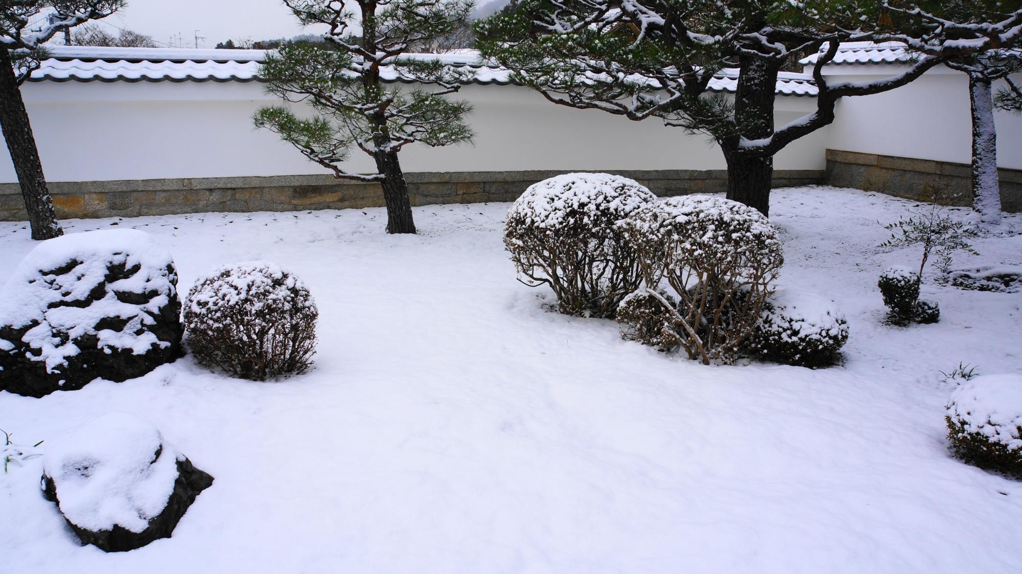 圓光寺の真っ白にそまった山門付近