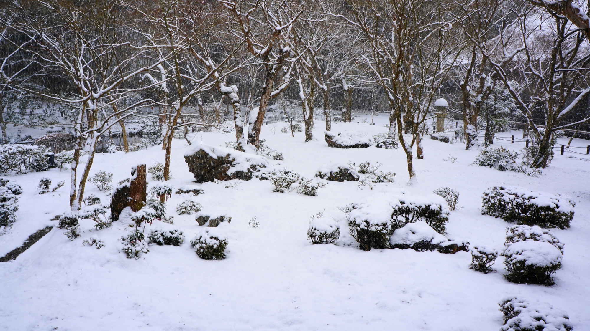 雪の積もった圓光寺