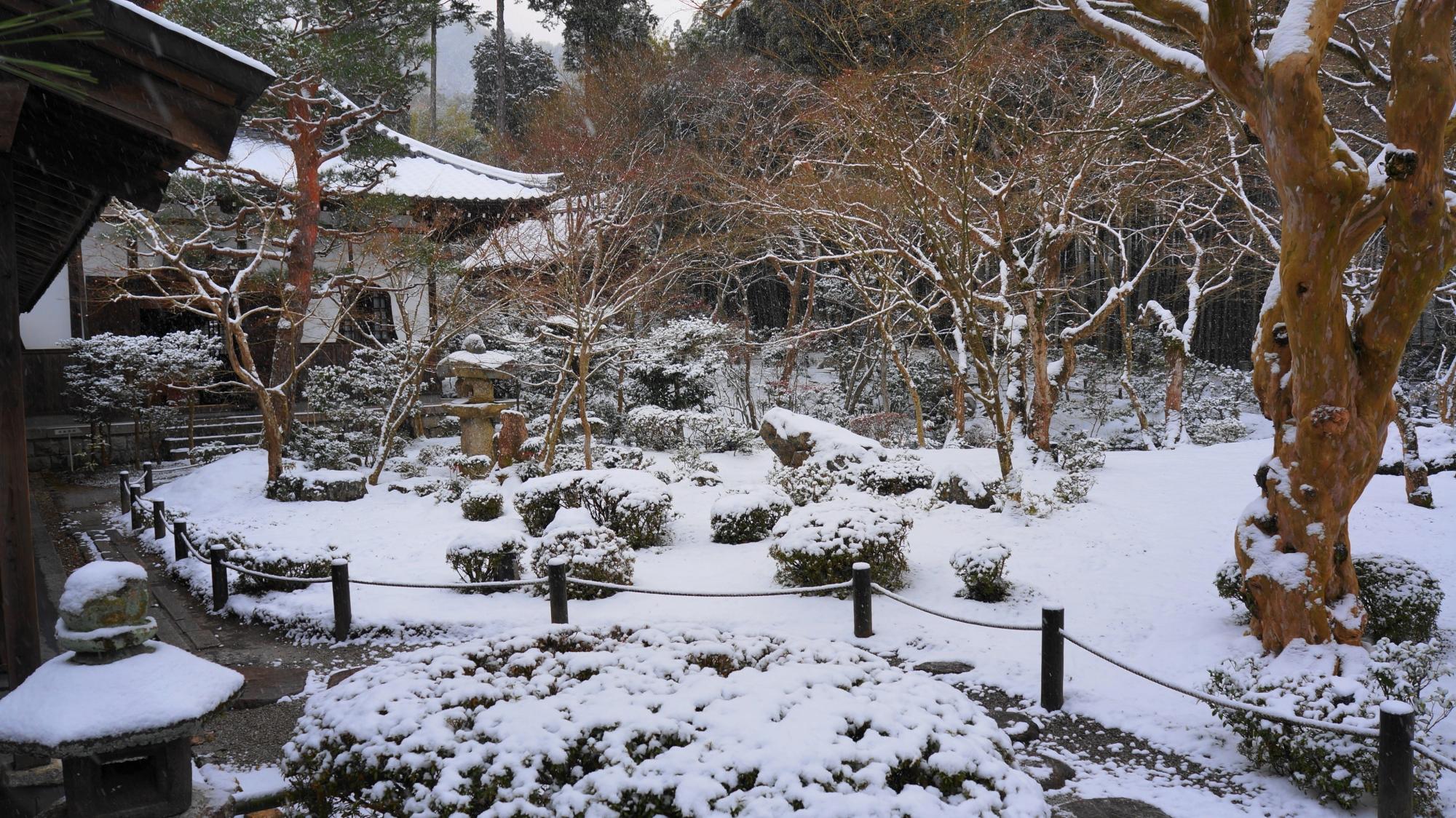 高画質 写真 圓光寺 雪景色