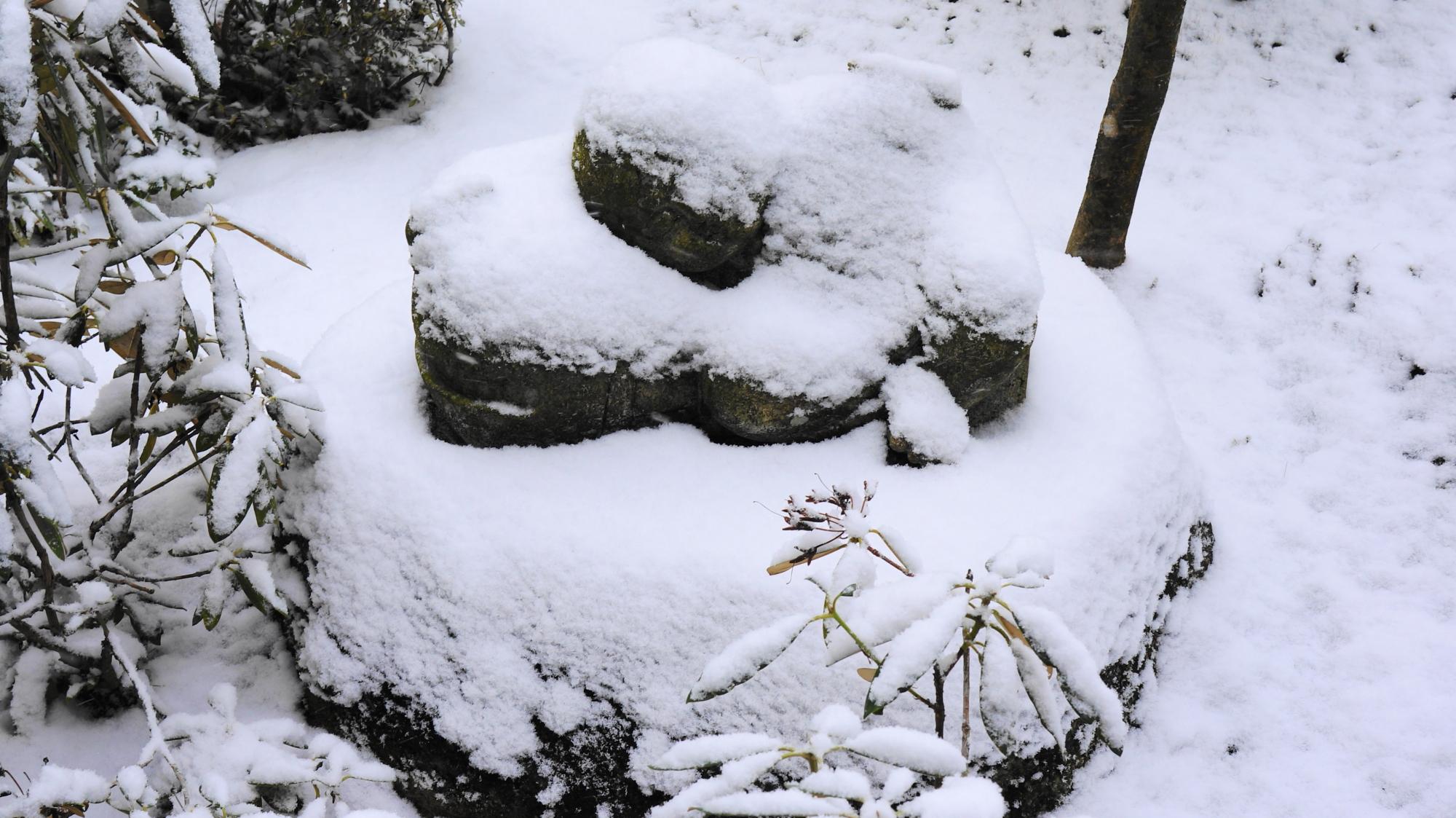 圓光寺の雪が積もったいねむり小坊主