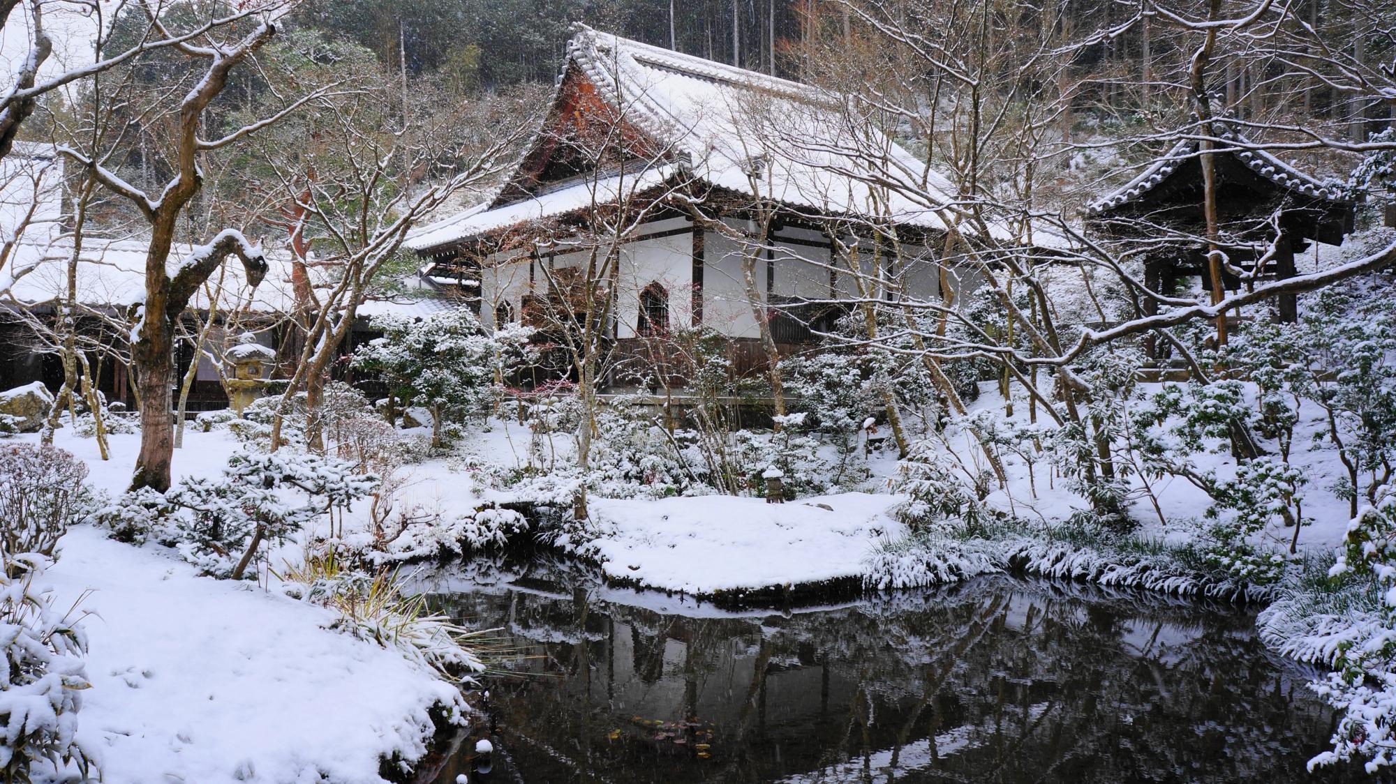 圓光寺の雪の栖龍池と坐禅堂