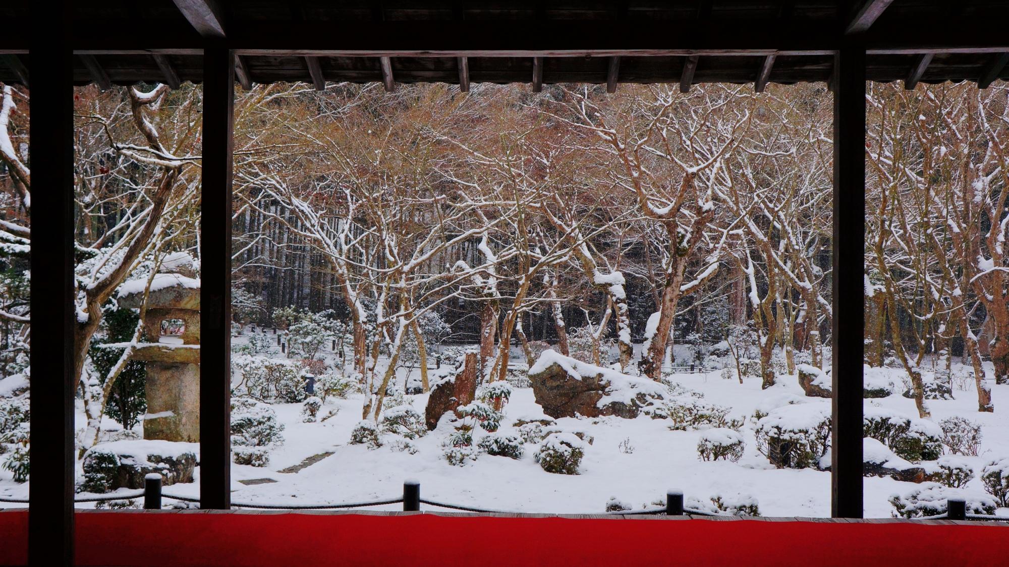 赤い絨毯が演出する雪の十牛之庭