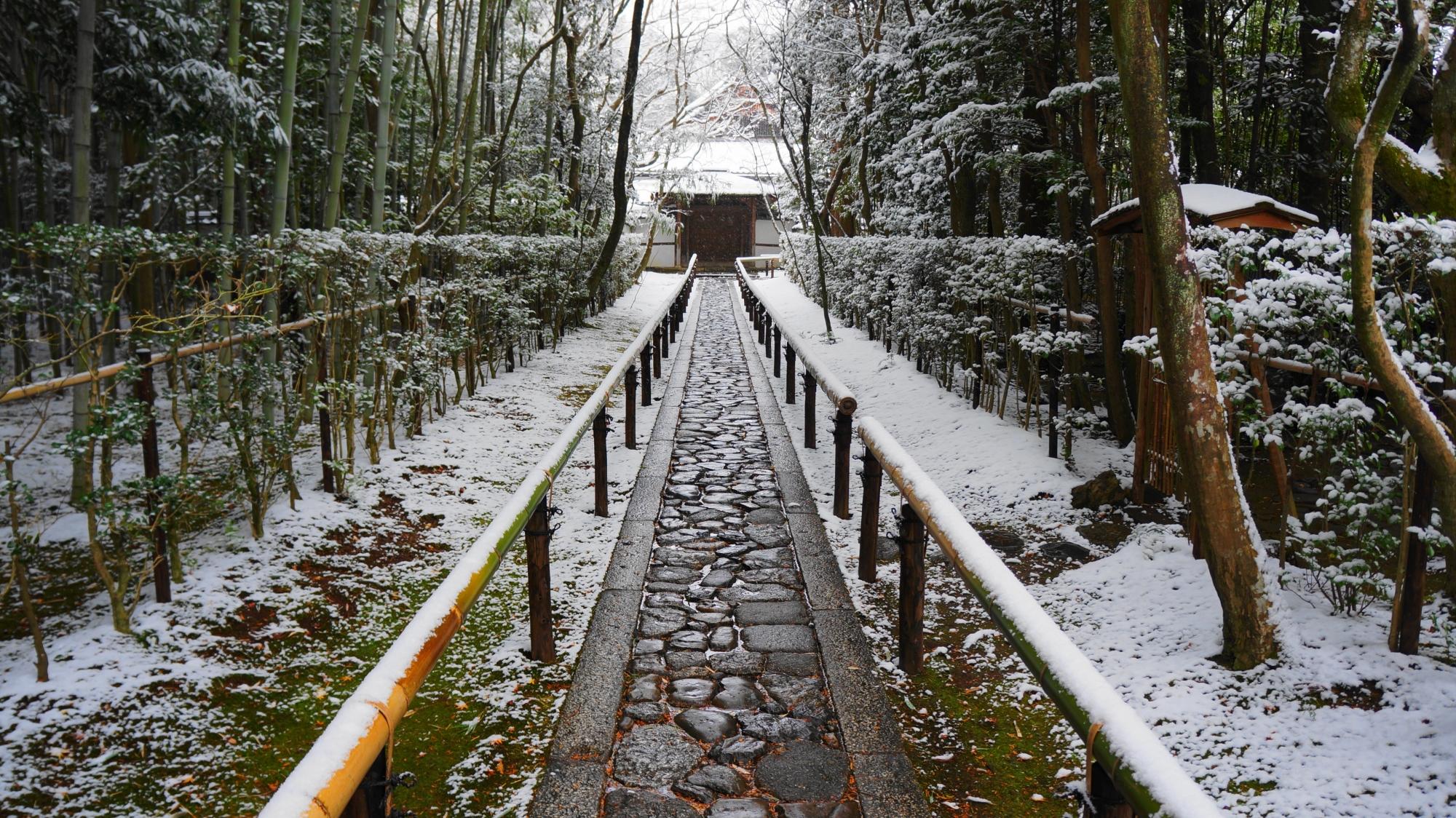 高桐院の参道の雪景色