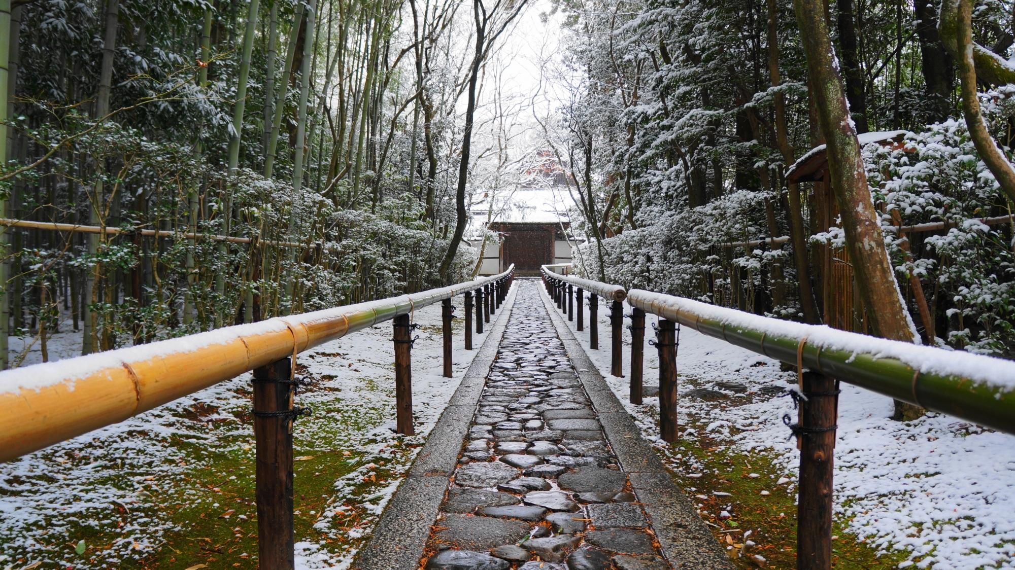高桐院の趣きある雪の参道