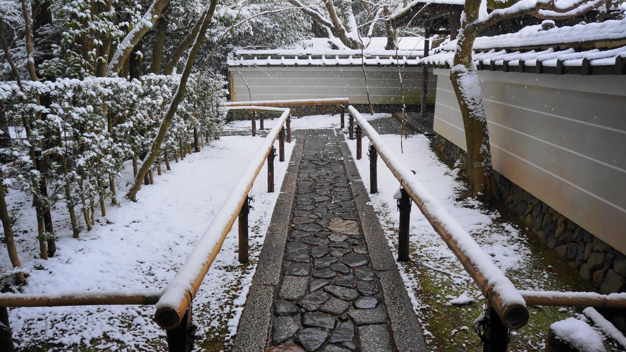 高桐院の中門付近の参道の雪景色