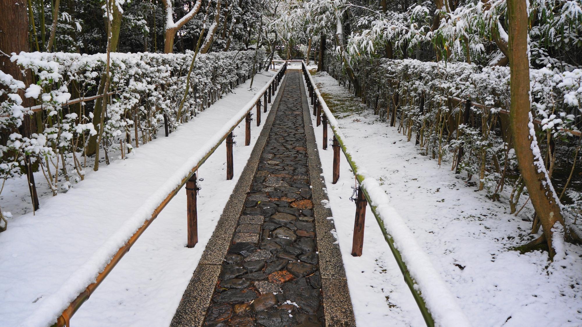 唐門前から眺めた参道の雪景色
