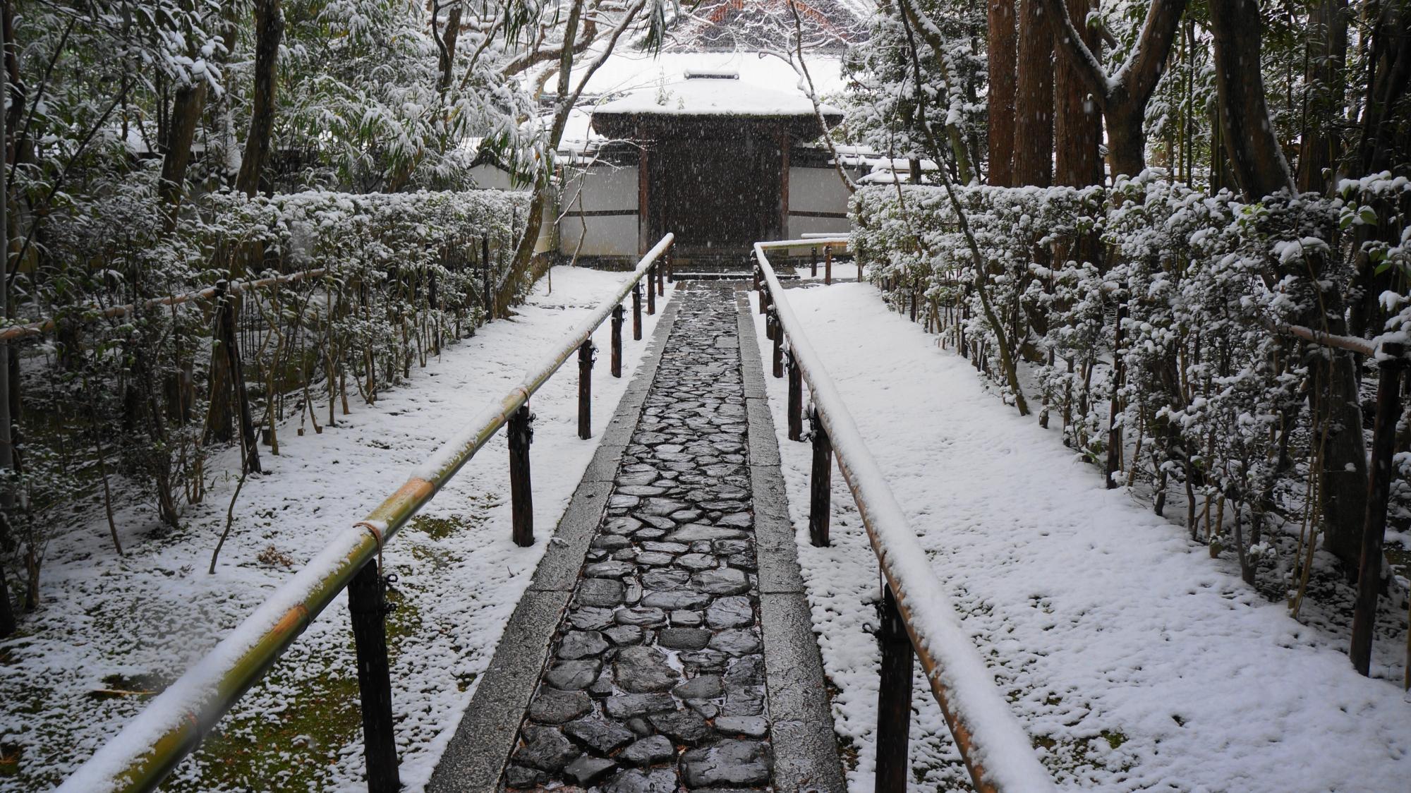 高桐院の唐門と参道の雪景色
