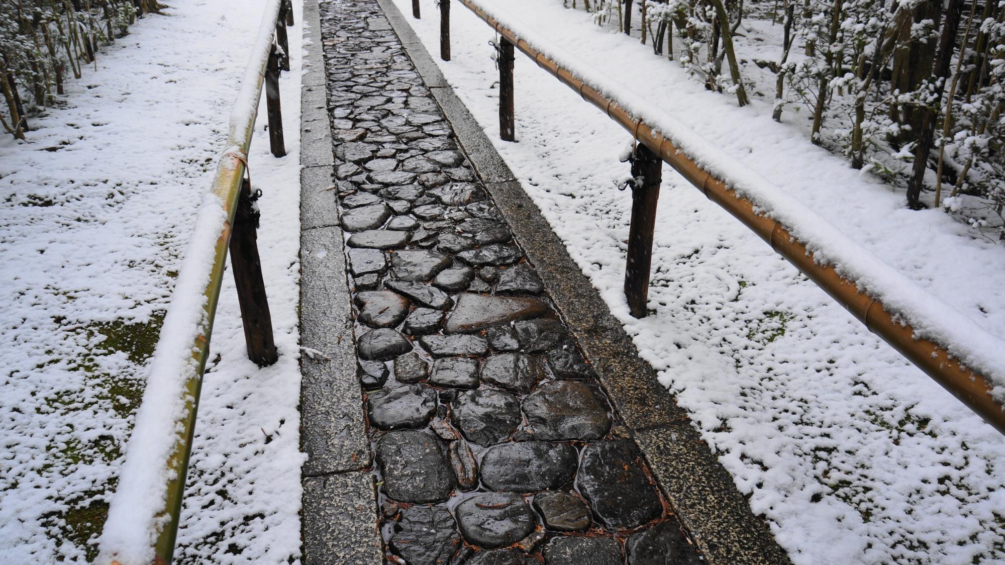 高桐院の風情ある濡れた石畳