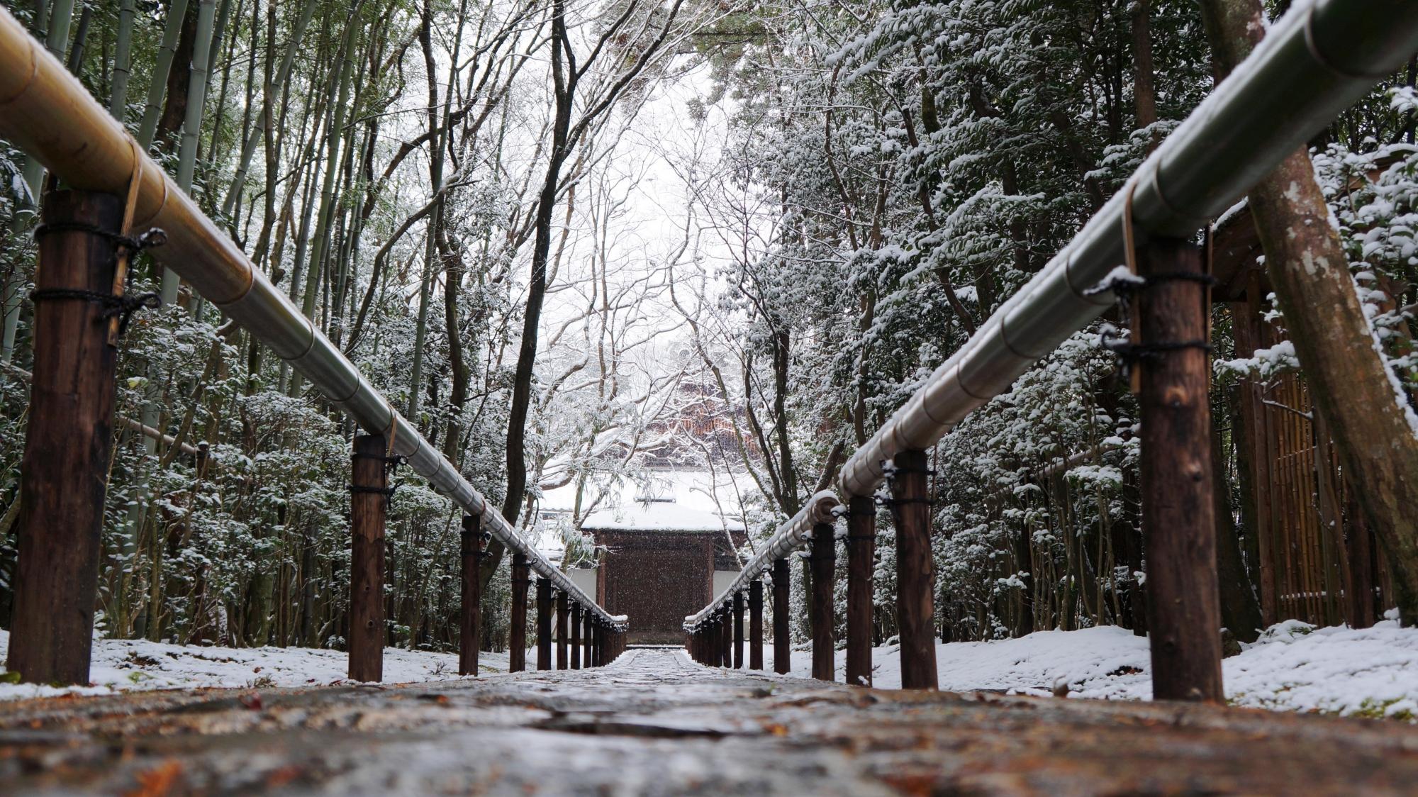 参道奥に見える雪の唐門