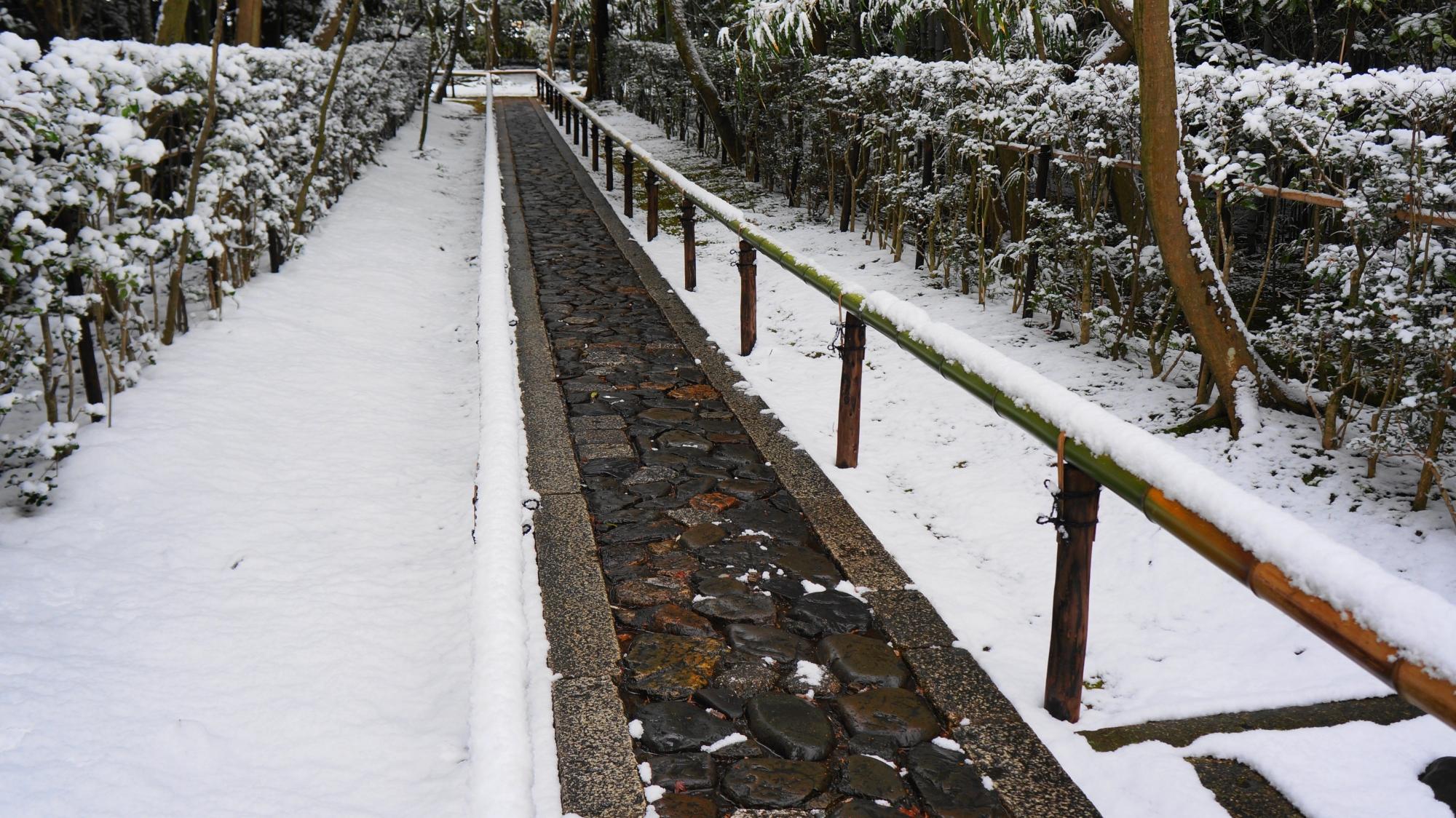 高画質 写真 高桐院参道 雪景色