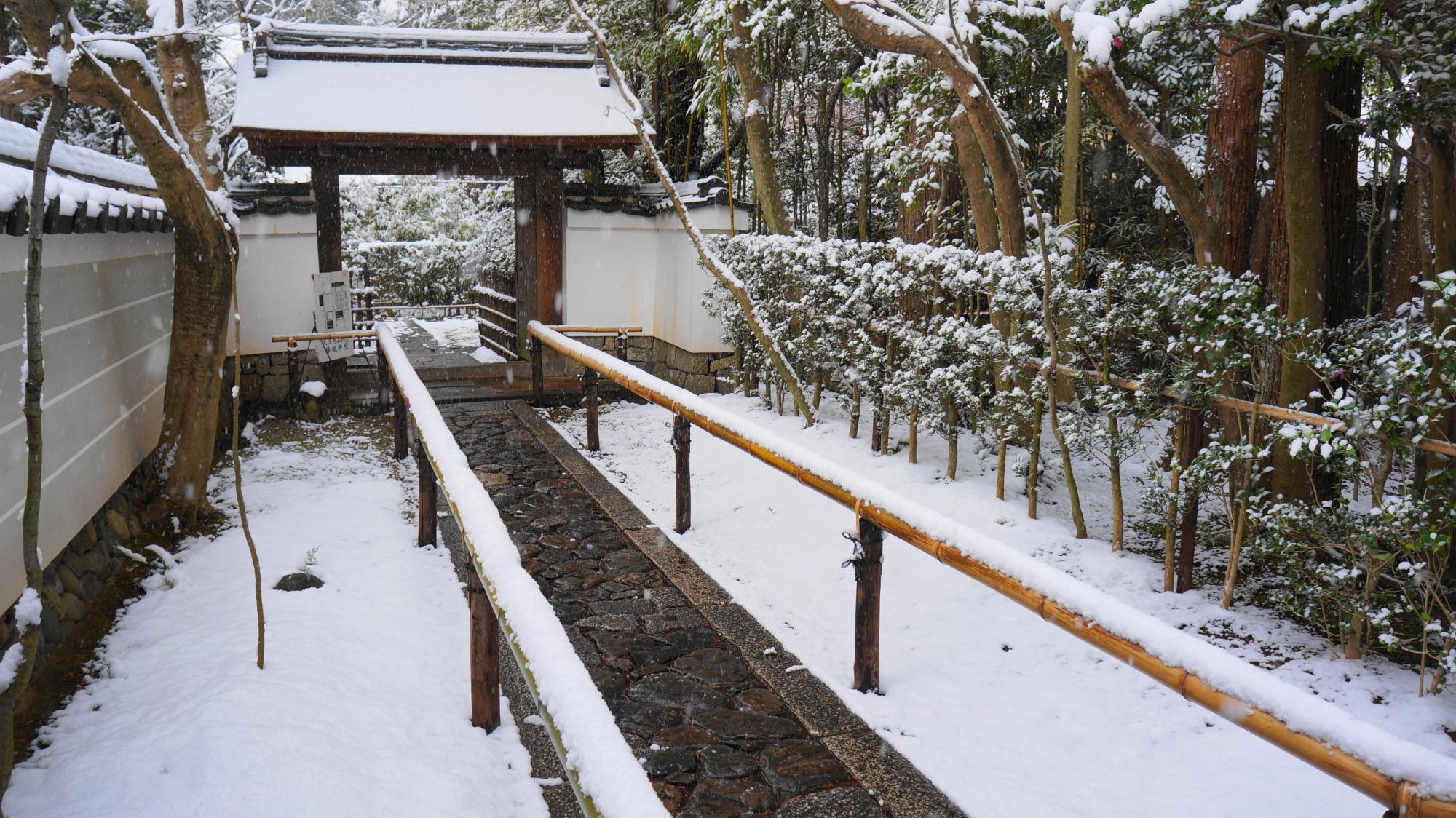 高桐院の中門の雪景色
