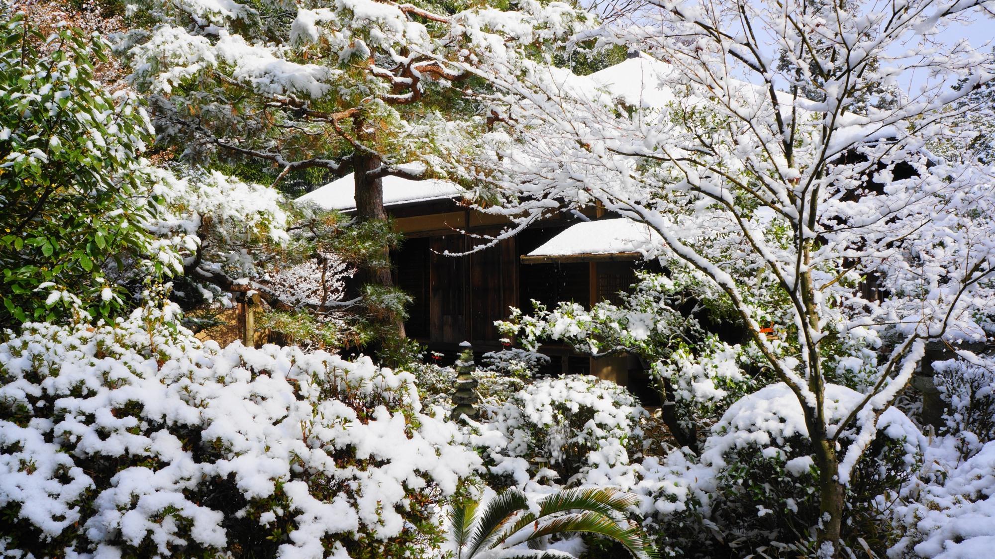 高桐院の書院「意北軒」の西庭の雪景色