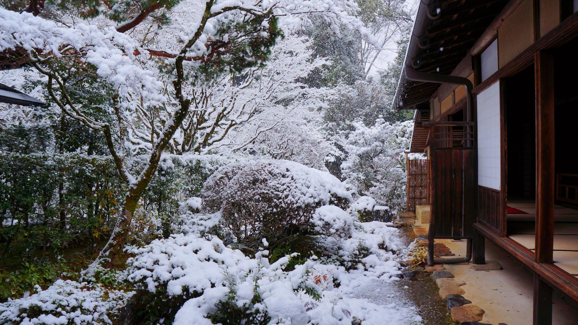 風情ある冬景色のひとコマ
