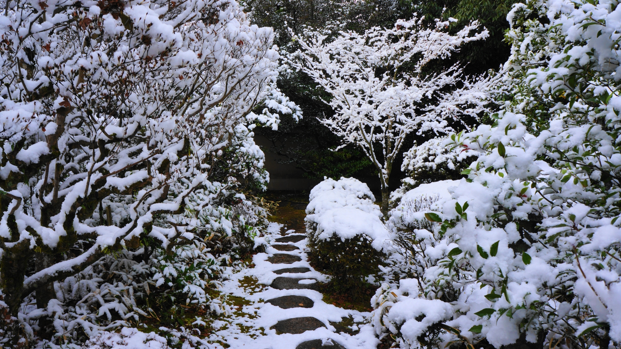 絶品の飛び石の参道の雪景色