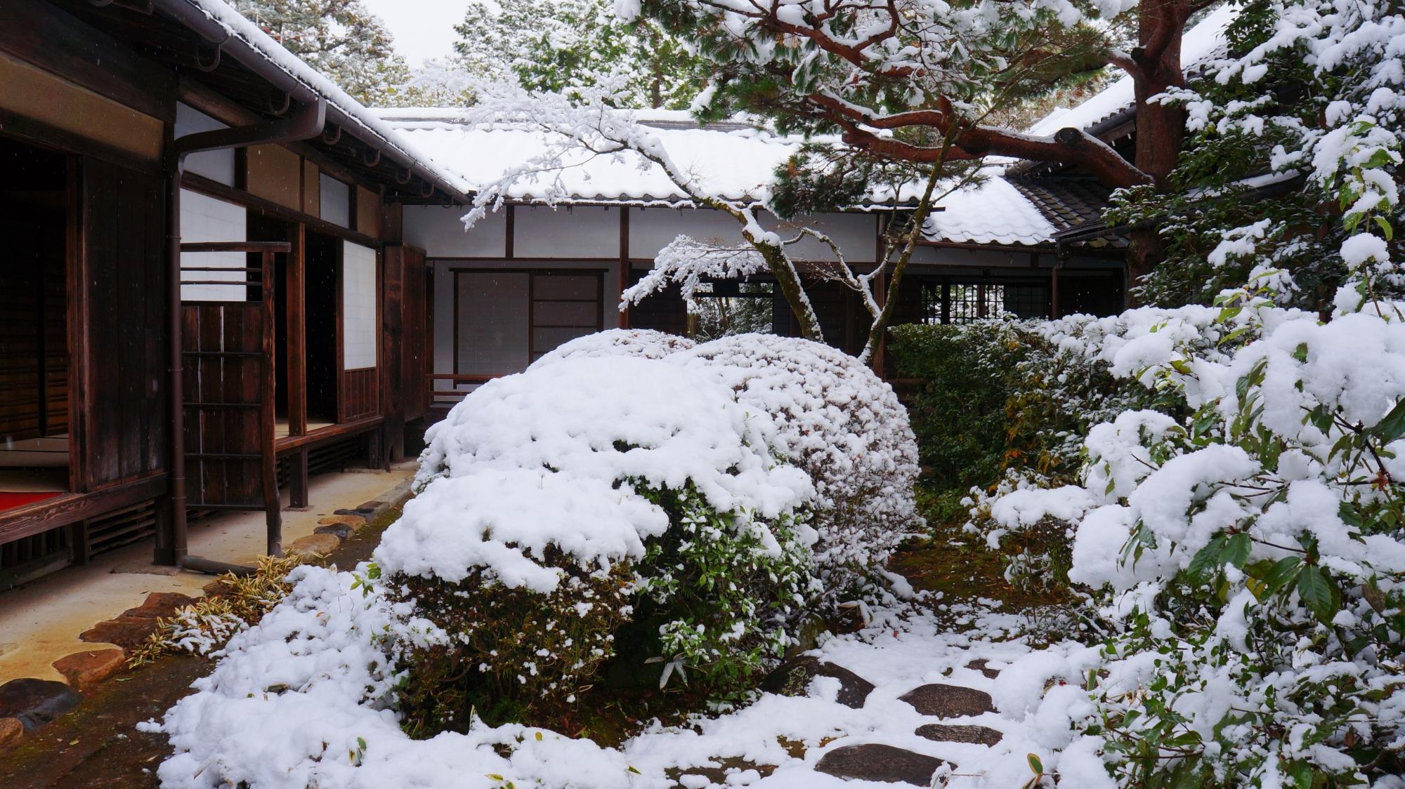 高画質 高桐院 雪景色 写真