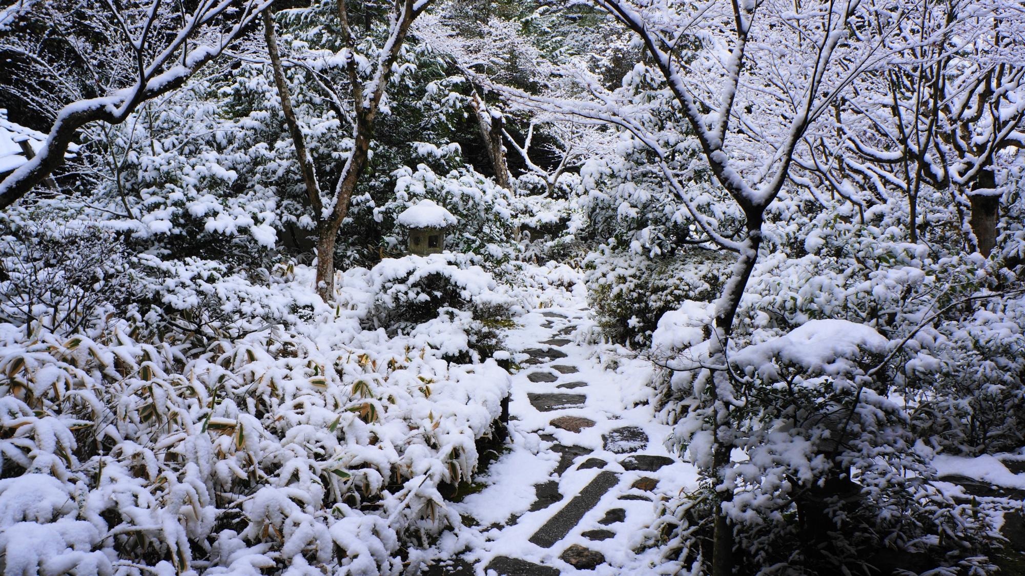 高桐院の客殿西庭の雪景色
