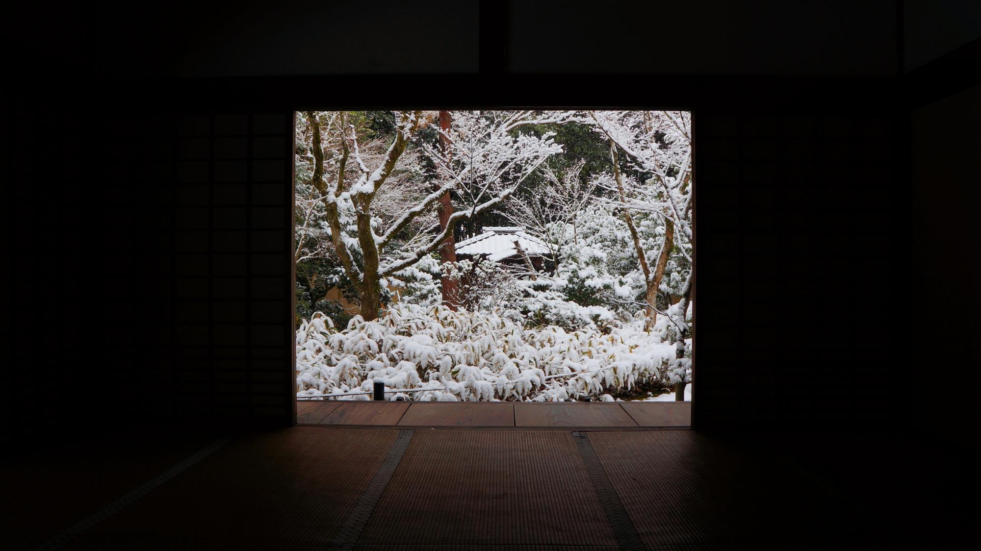 客殿奥から眺めた雪の庭園