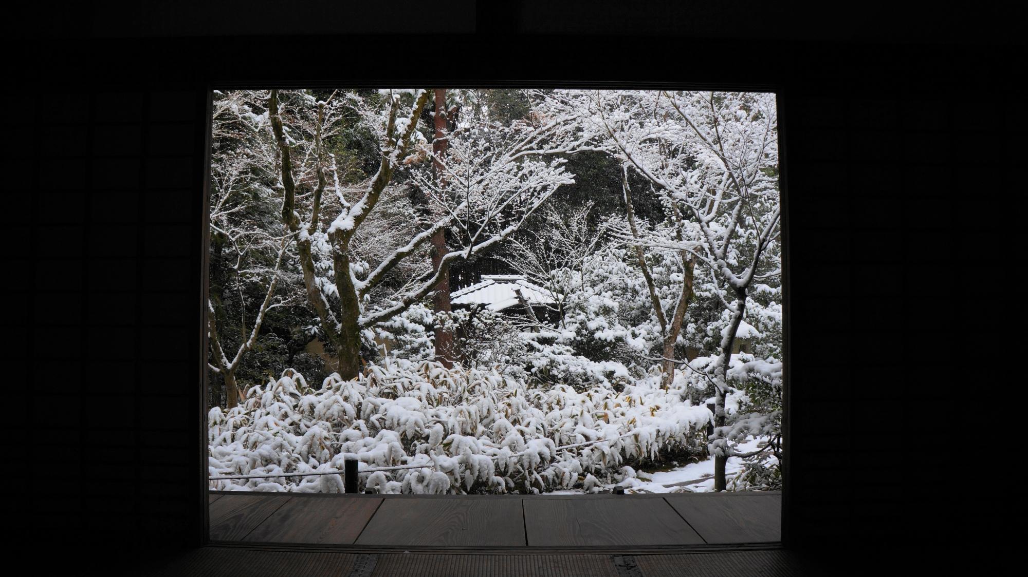 高桐院 高画質 写真 雪