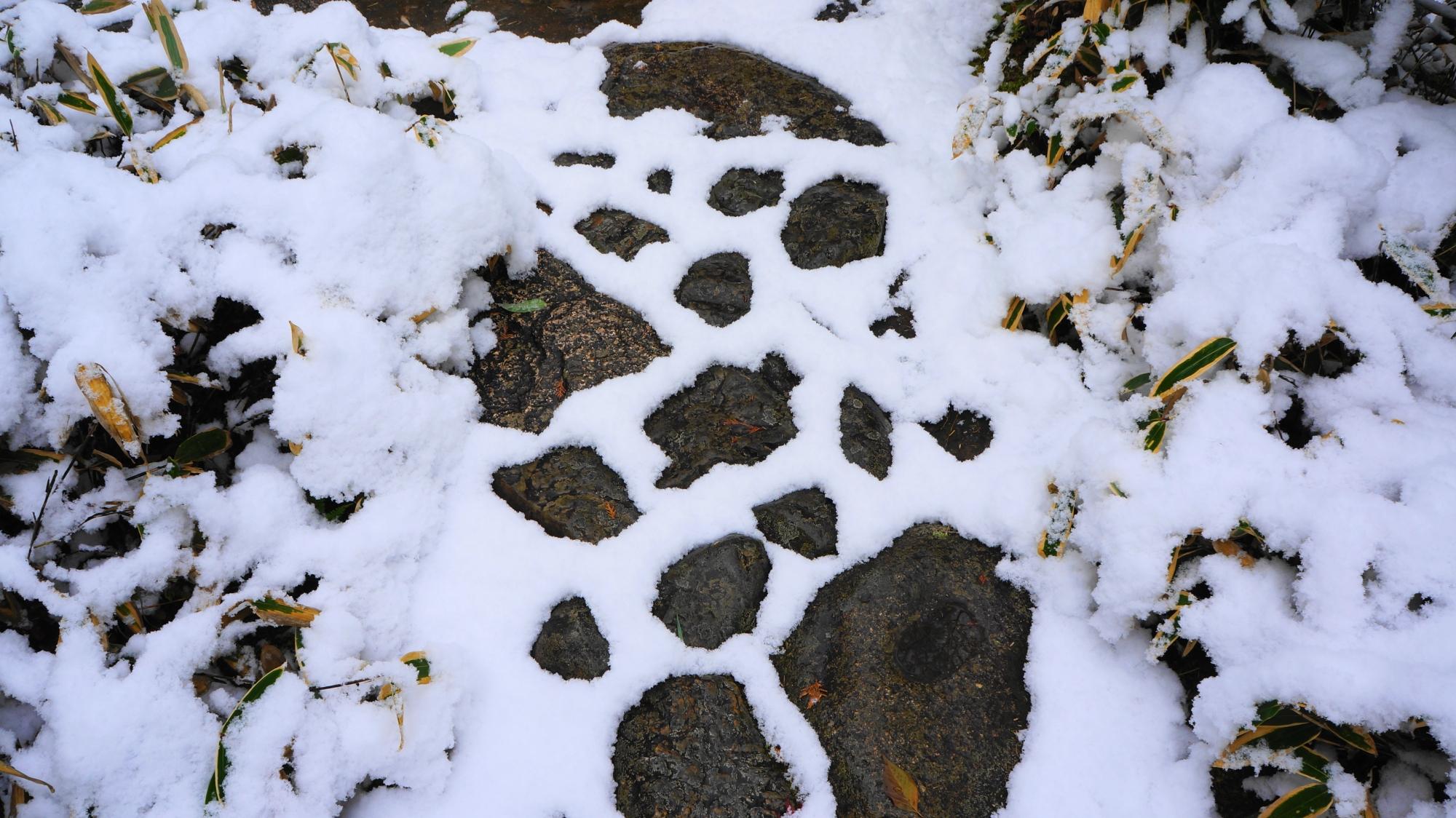 雪につつまれたいろんな形の飛び石