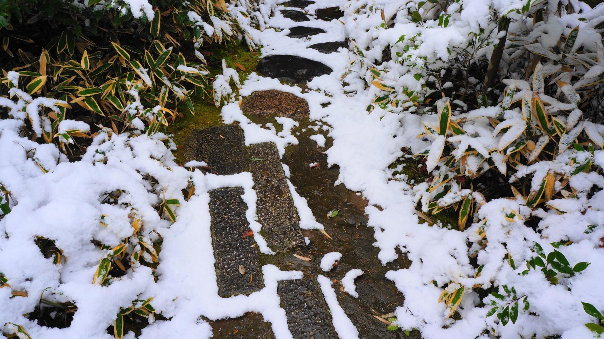 長い四角の飛び石と雪につつまれた笹