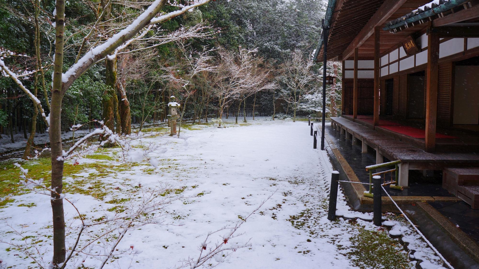 高桐院の客殿と雪の庭園