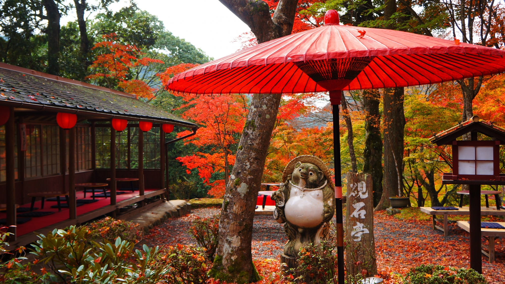 狸さんの向こうで紅葉が色づく硯石亭