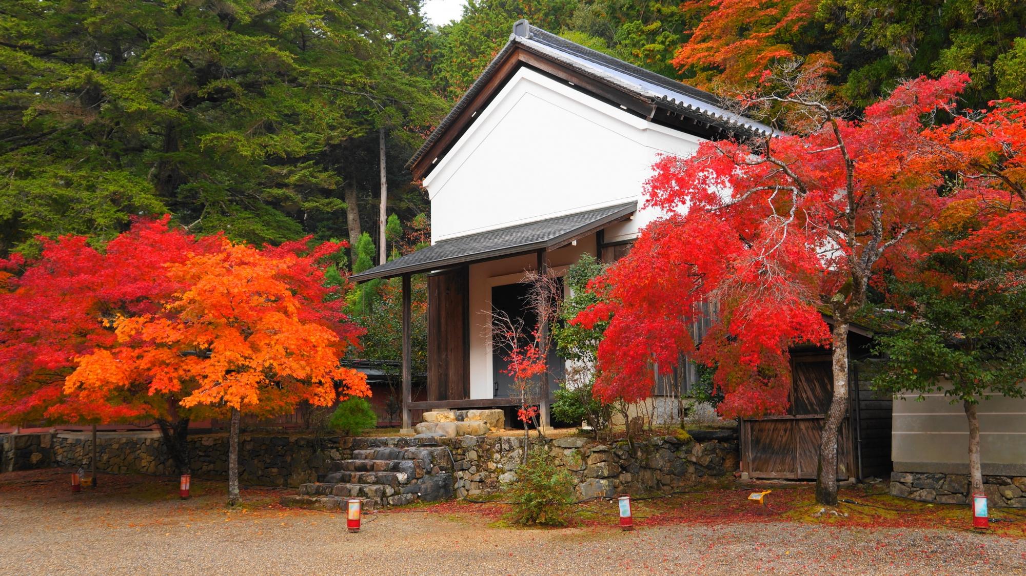 神護寺の宝蔵と白壁に映える紅葉