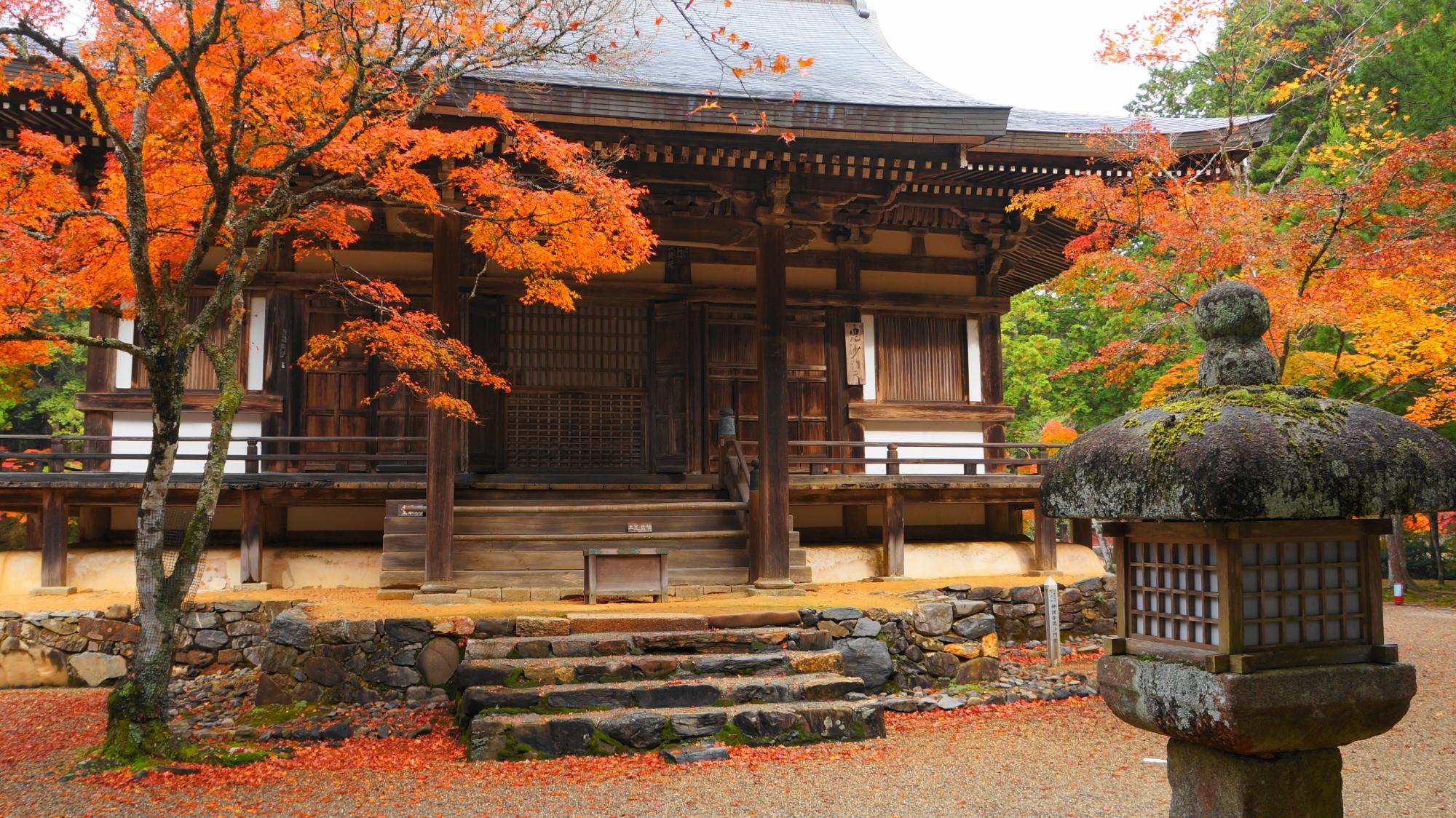広がる風情ある秋の情景