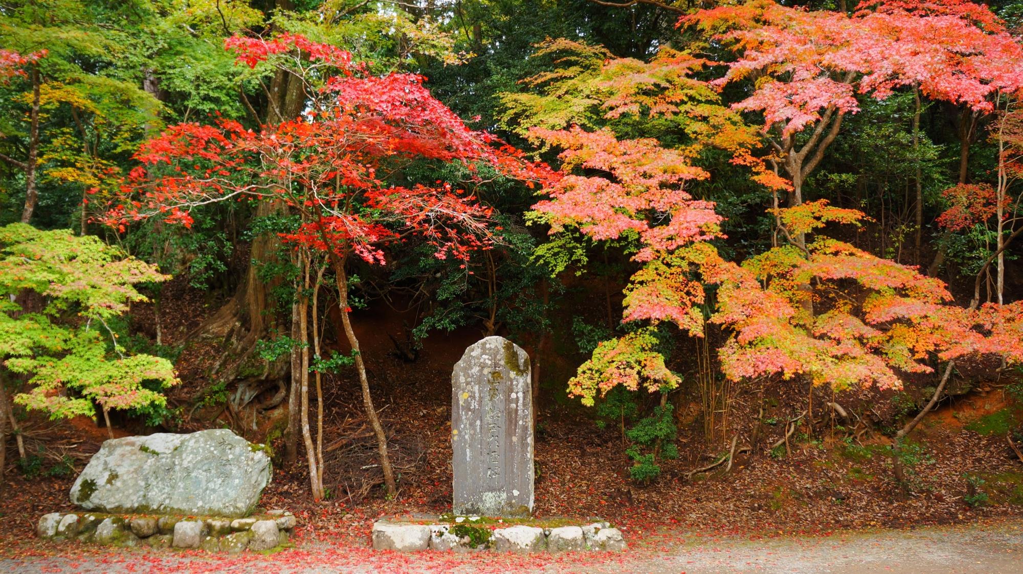 神護寺の能村登四郎の句碑付近の紅葉