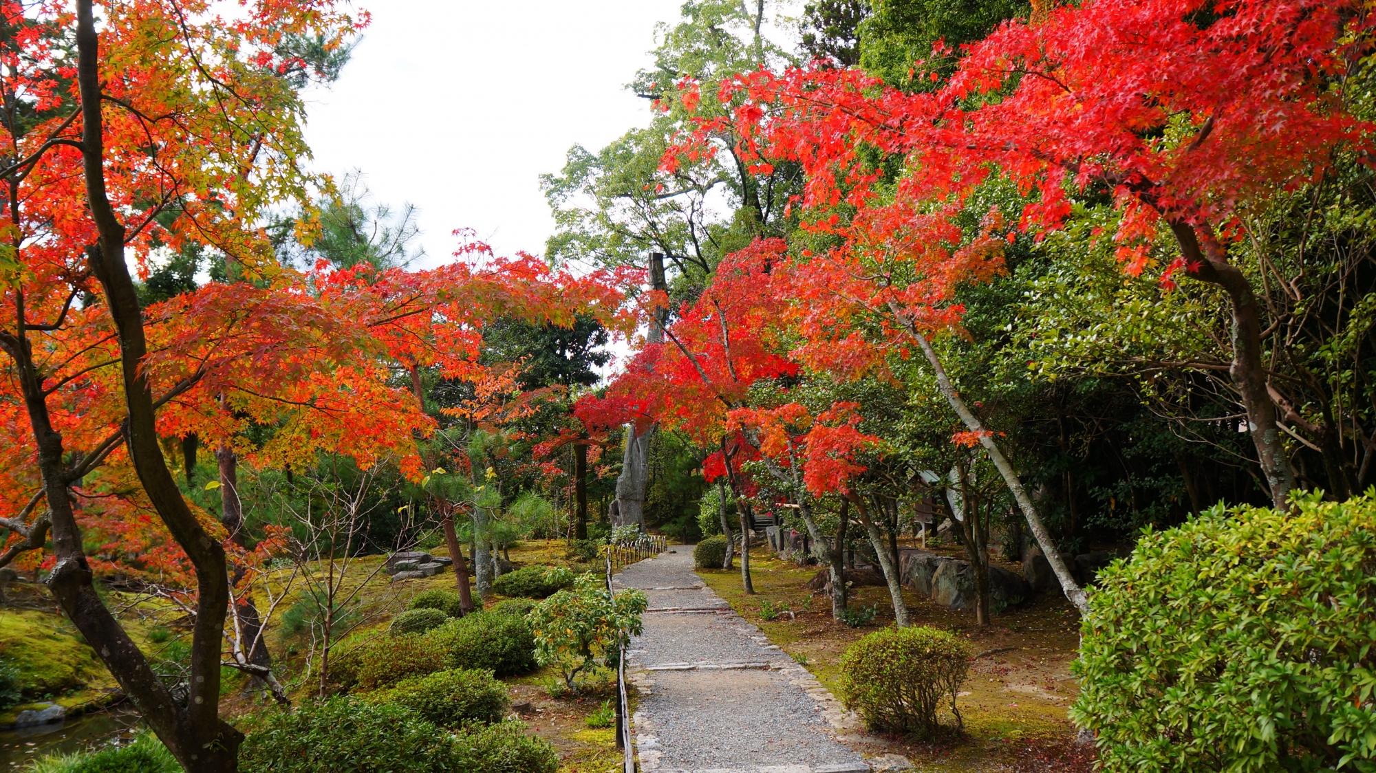 秋色につつまれる等持院の心字池と庭園