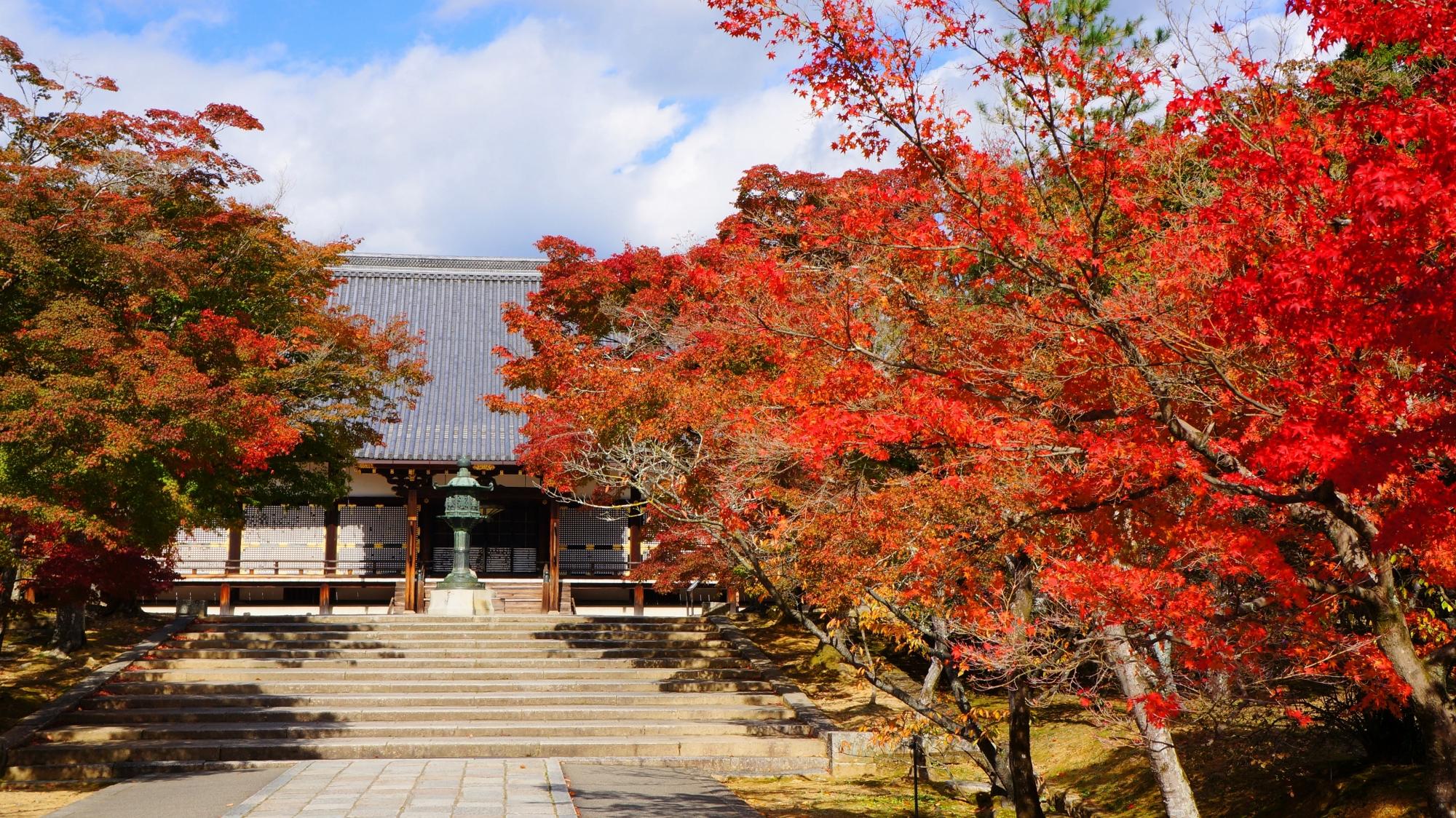 仁和寺の金堂前の溢れる紅葉