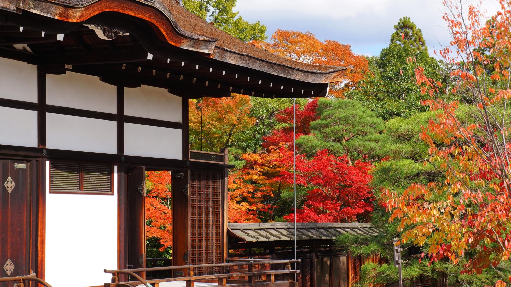 御殿南庭から眺めた御殿北庭の紅葉
