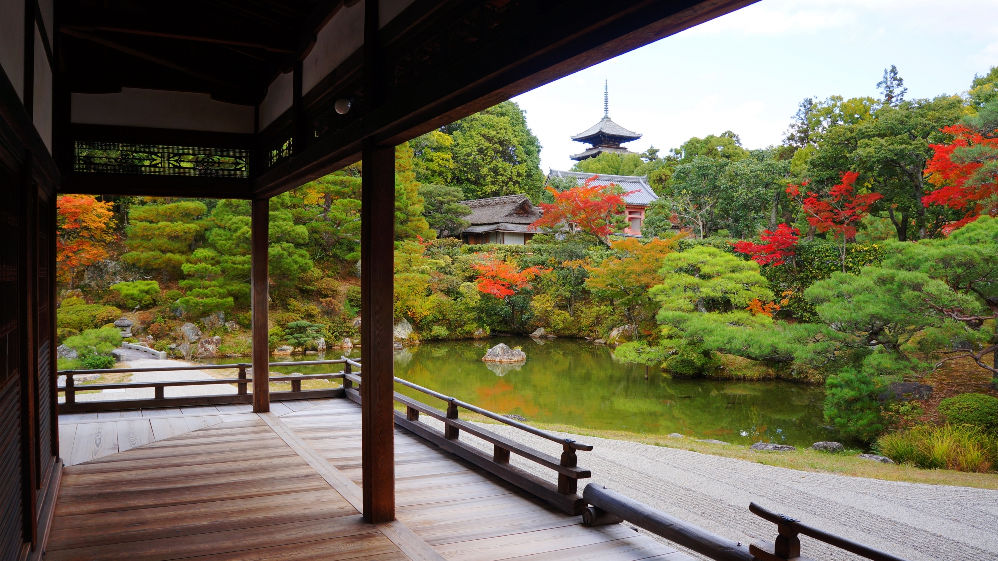 美しい庭園の緑と水辺を華やぐ紅葉