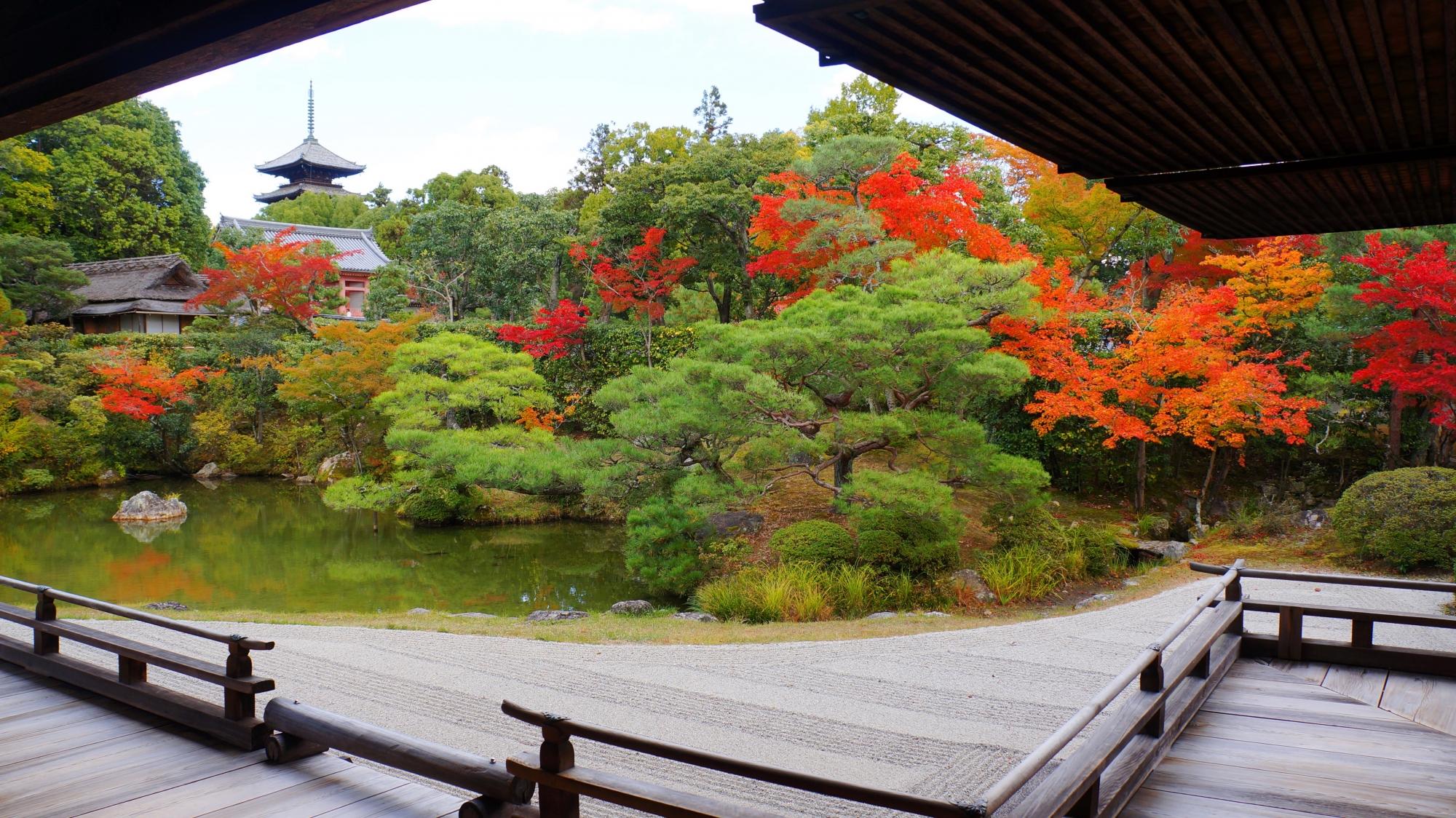 仁和寺の御殿北庭の紅葉と奥に見える五重塔
