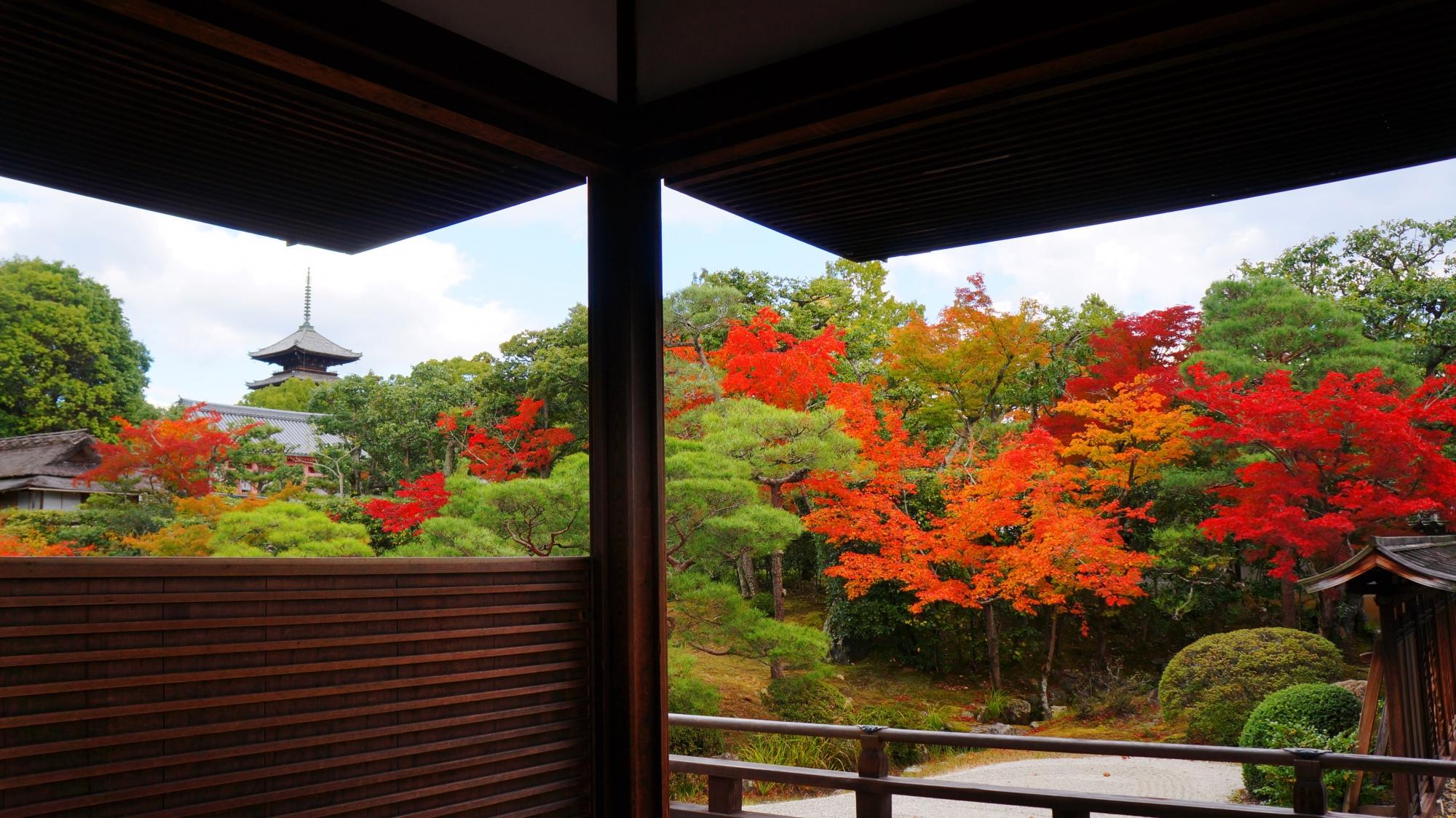 何時間でも見ていられそうな仁和寺特有の秋の情景