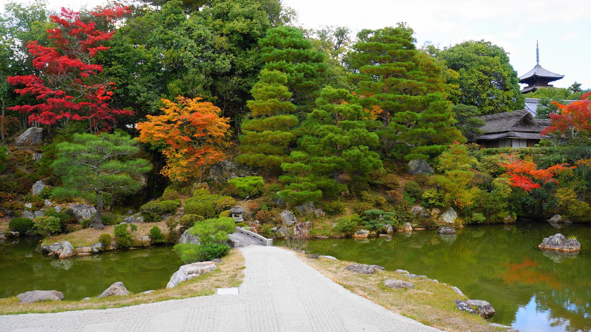 常緑の木々も立派で綺麗な仁和寺の御殿庭園