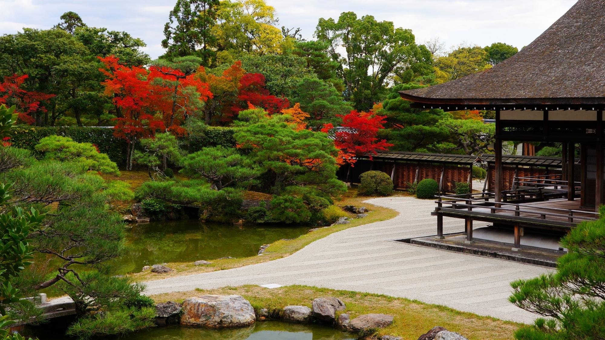 仁和寺の素晴らしい紅葉と庭園や秋色の情景