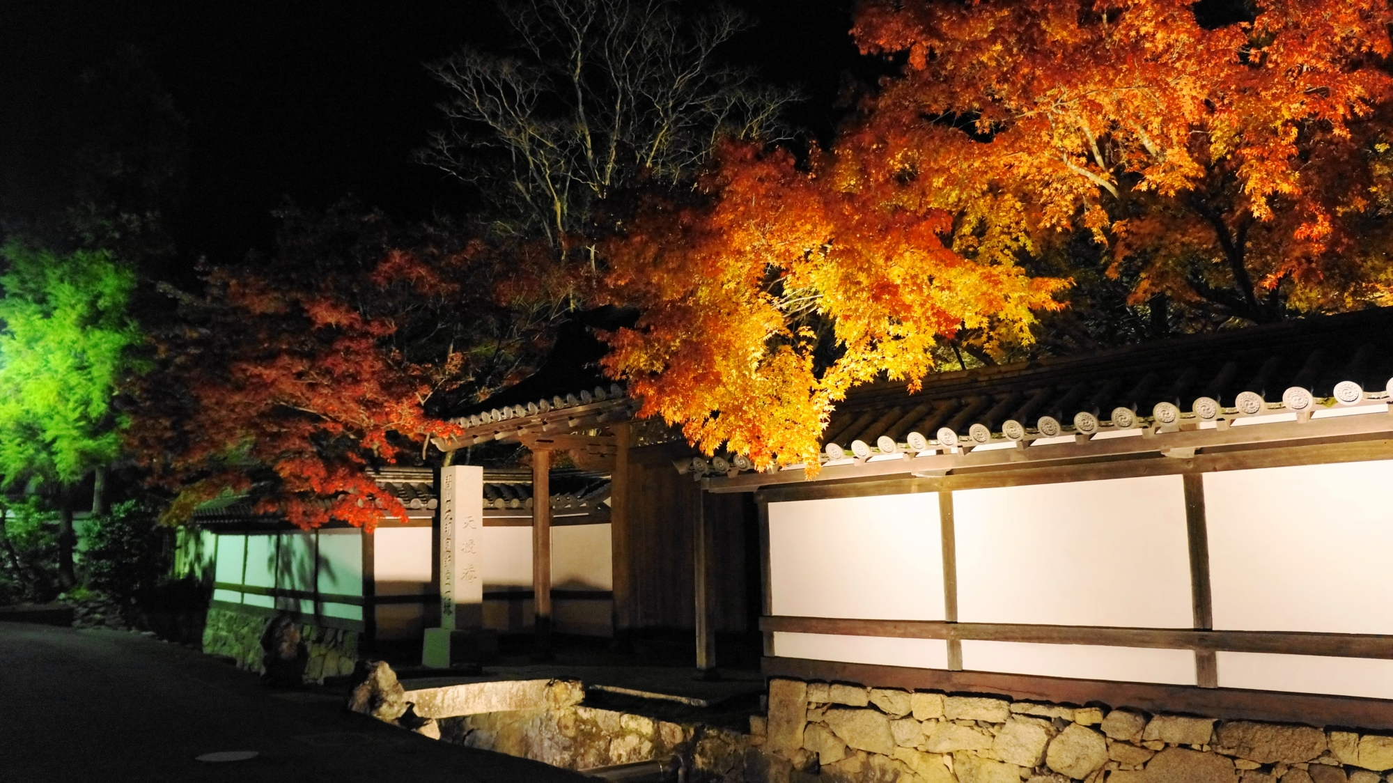 天寿庵の勅使門付近の紅葉ライトアップ