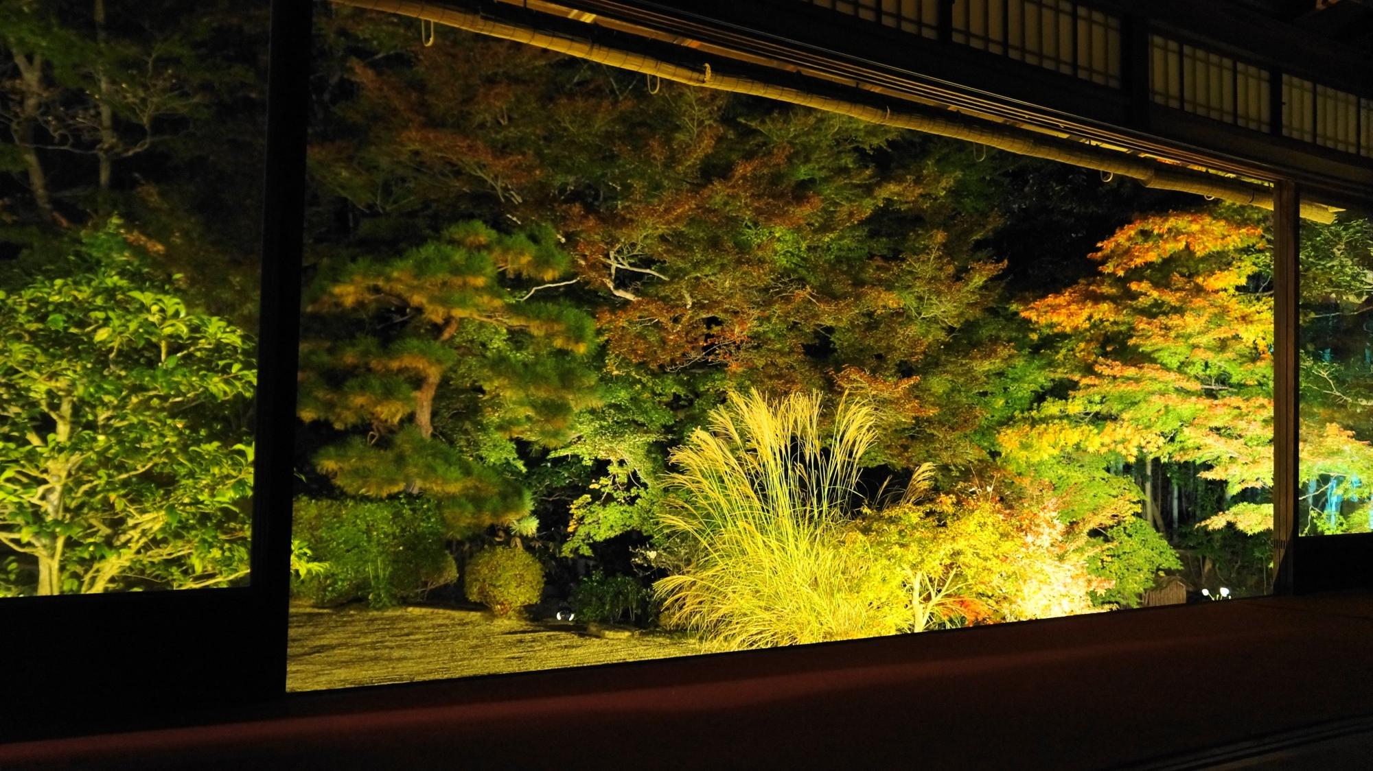 ライトアップされた多様な天寿庵の書院南庭園