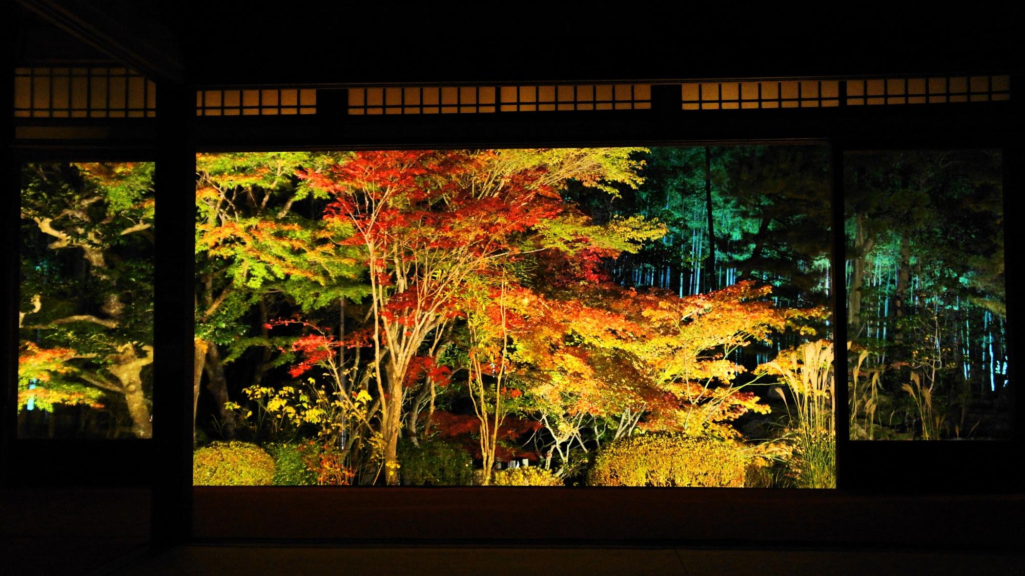 天寿庵の書院南庭の紅葉ライトアップ